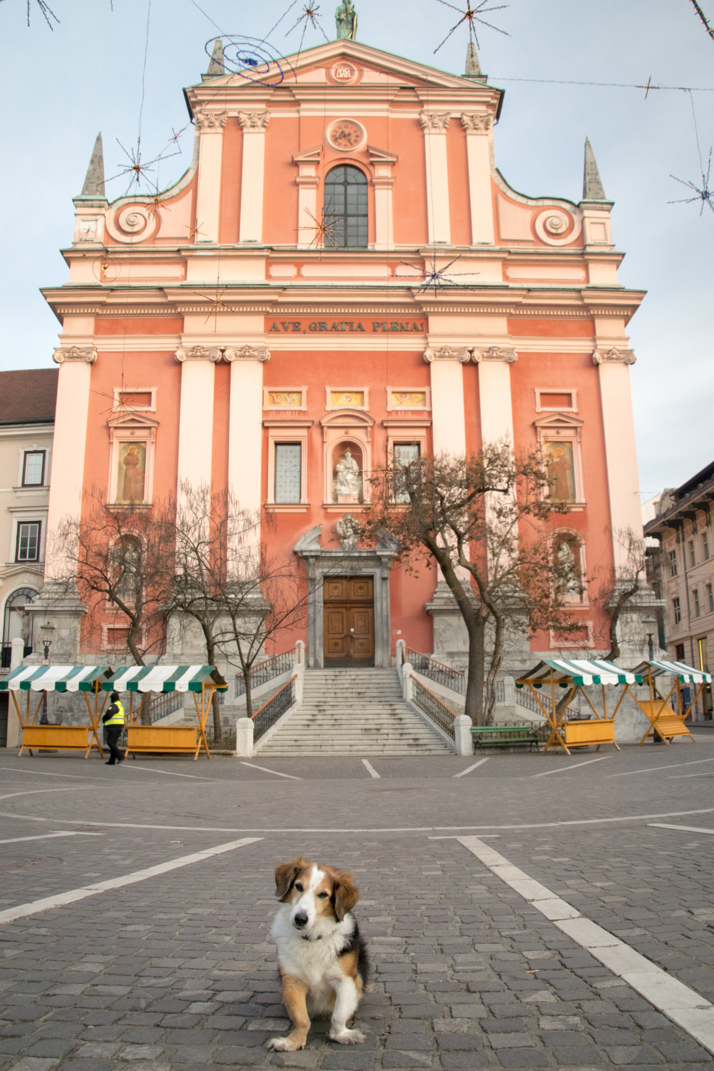 Mango & the Franciscan Church of the Annunciation