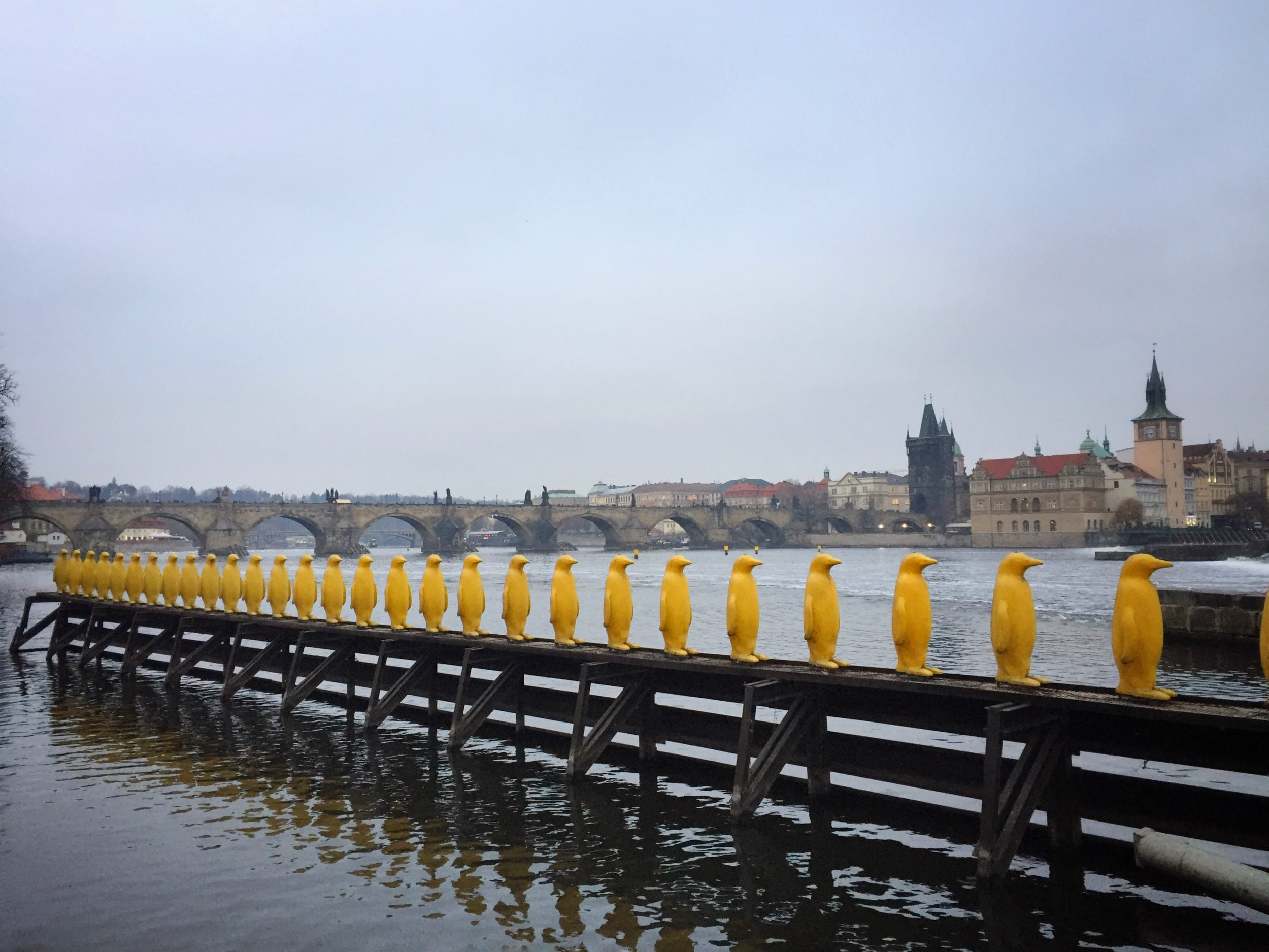 Cracking Art Group's yellow penguins, made from recycled water bottles rescued from landfill sites