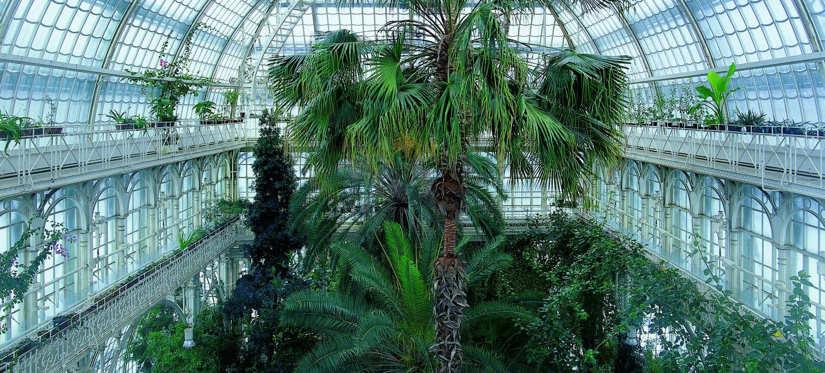 interior of the Palm House (photo credit: schoenbrunn.at)