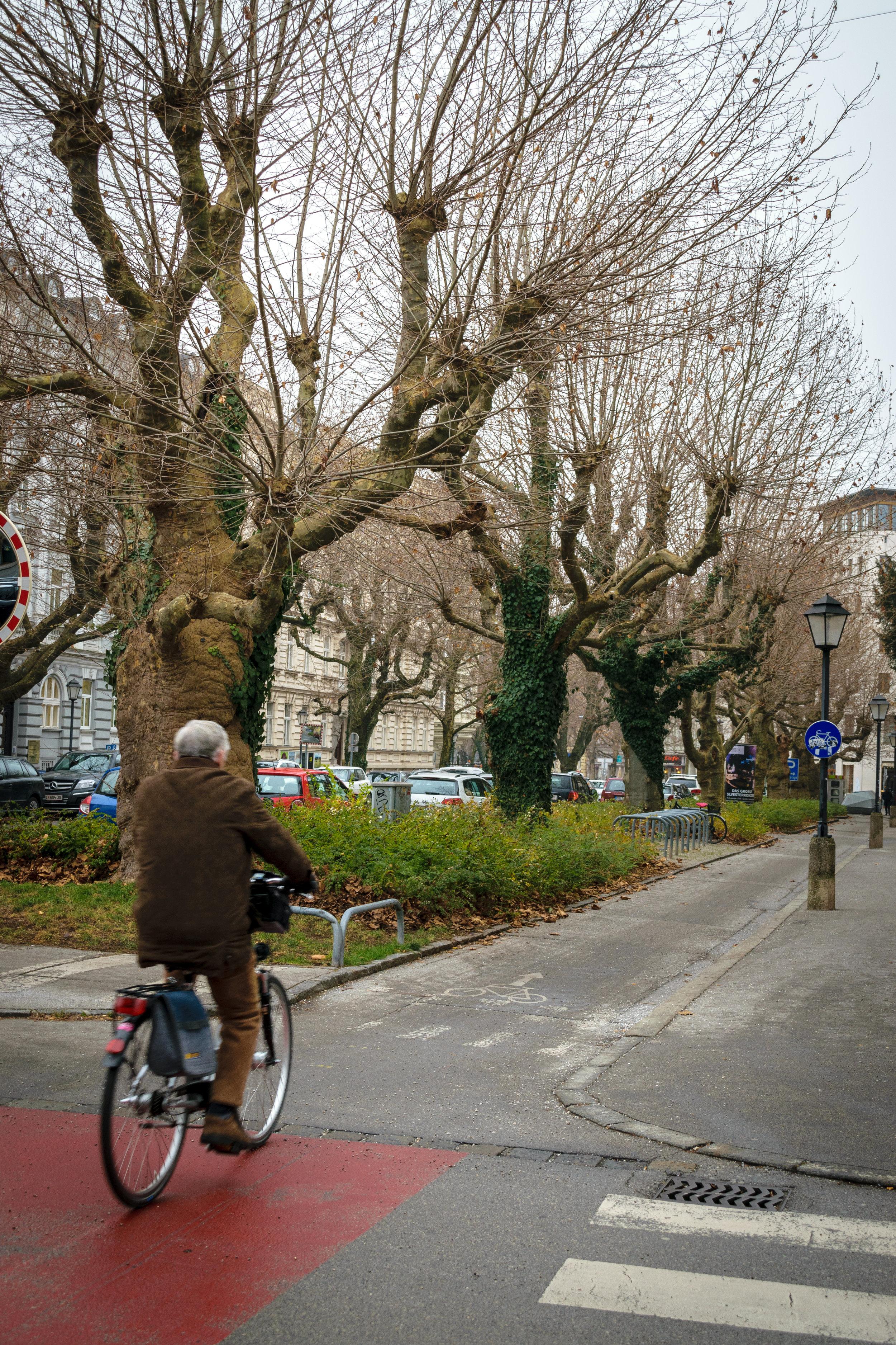 a pleasant bike ride around Salzburg