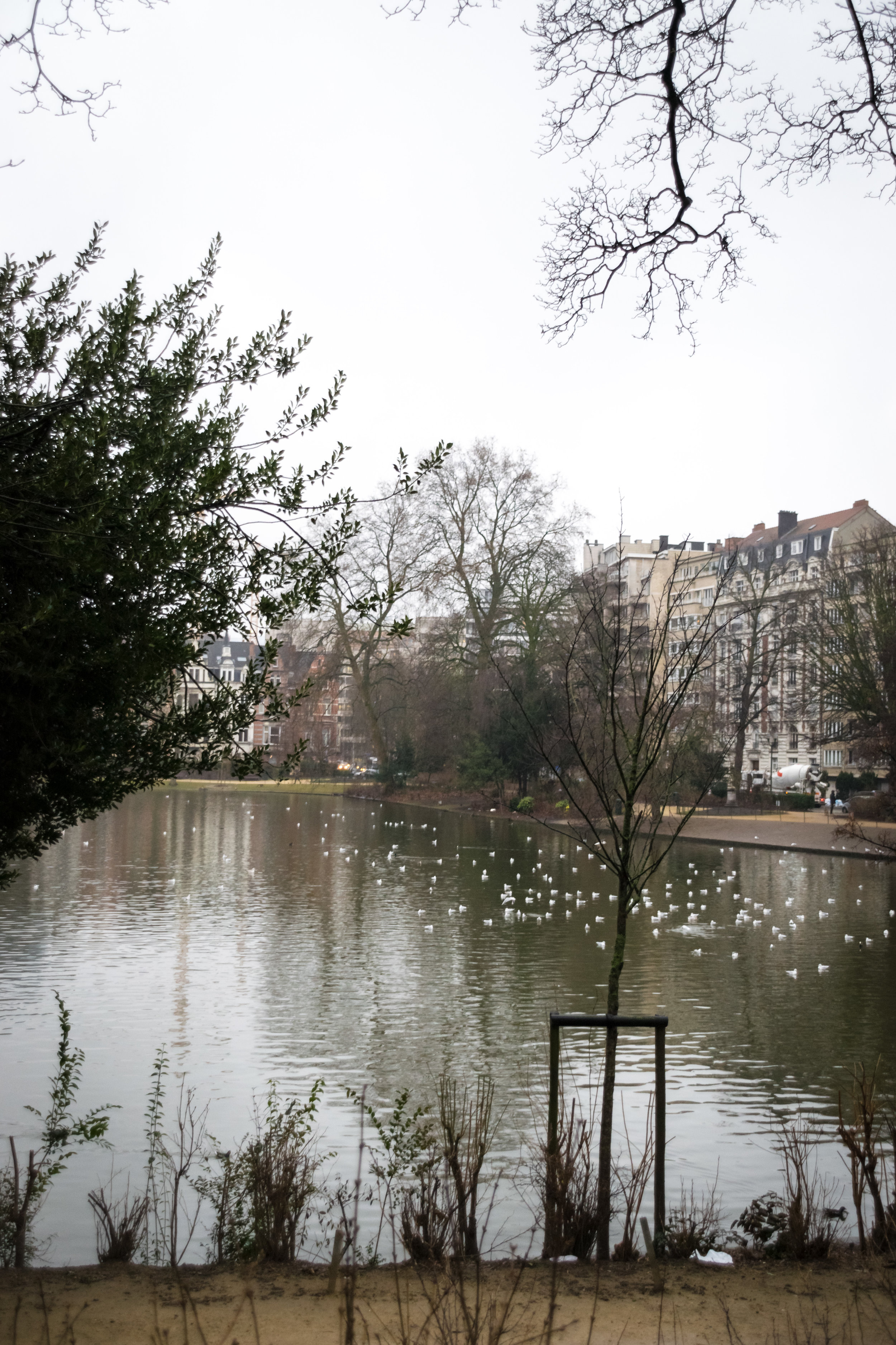 Square Marie-Louise