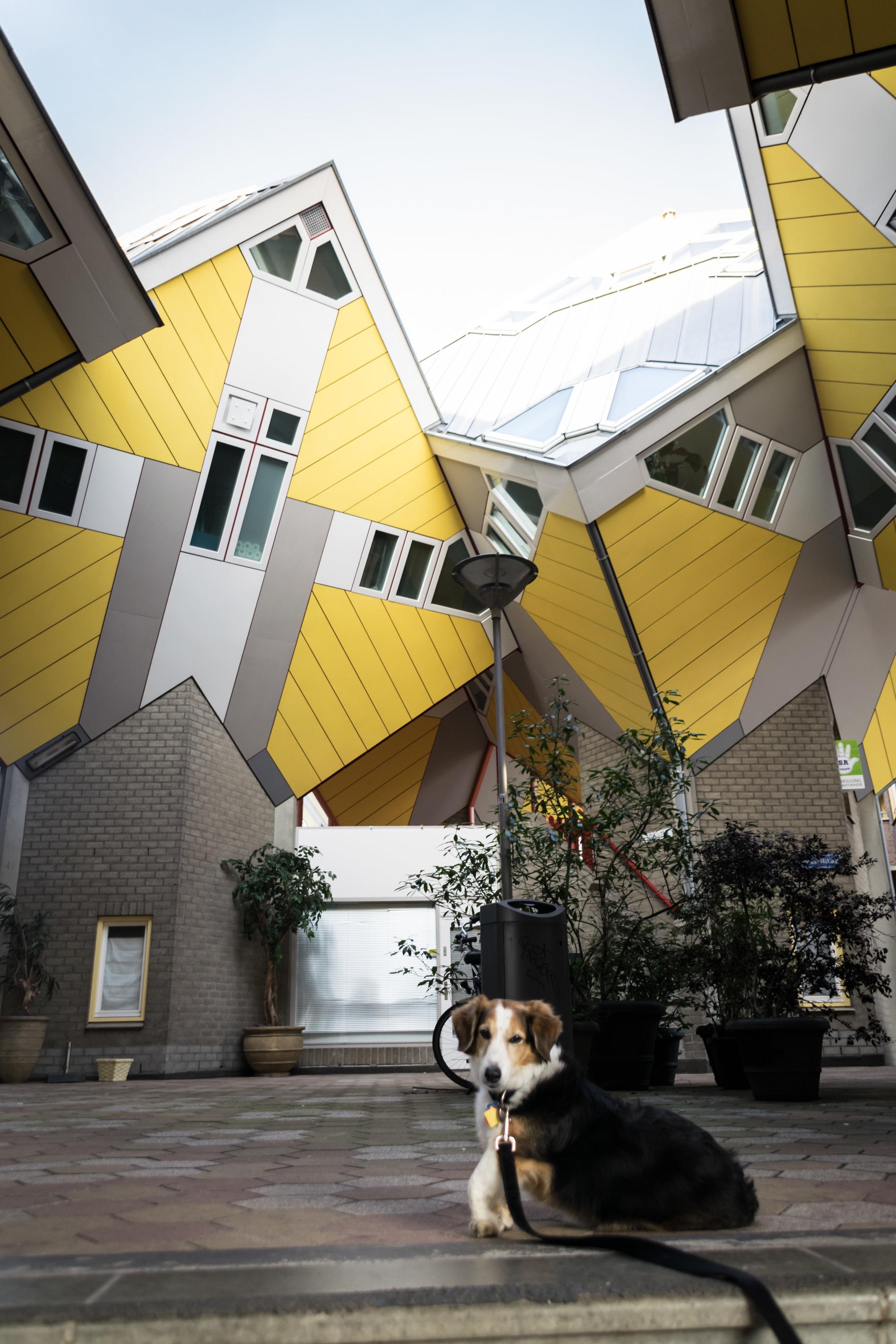 Cube House-2.jpg