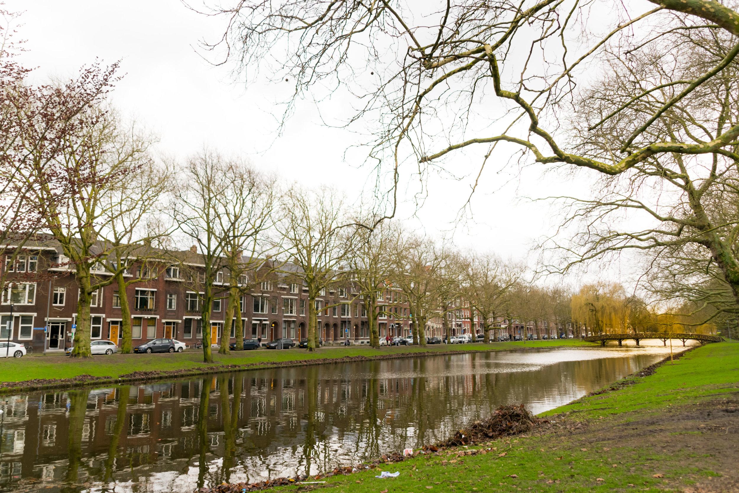 Rotterdam around-6.jpg
