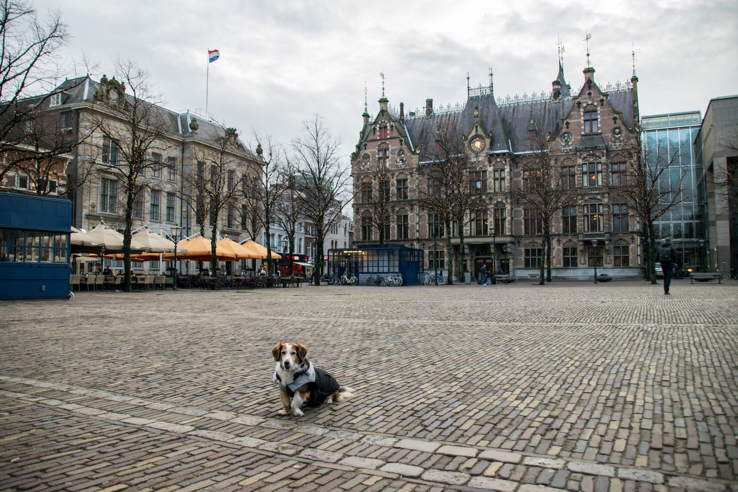 The Hague scenes-10.jpg