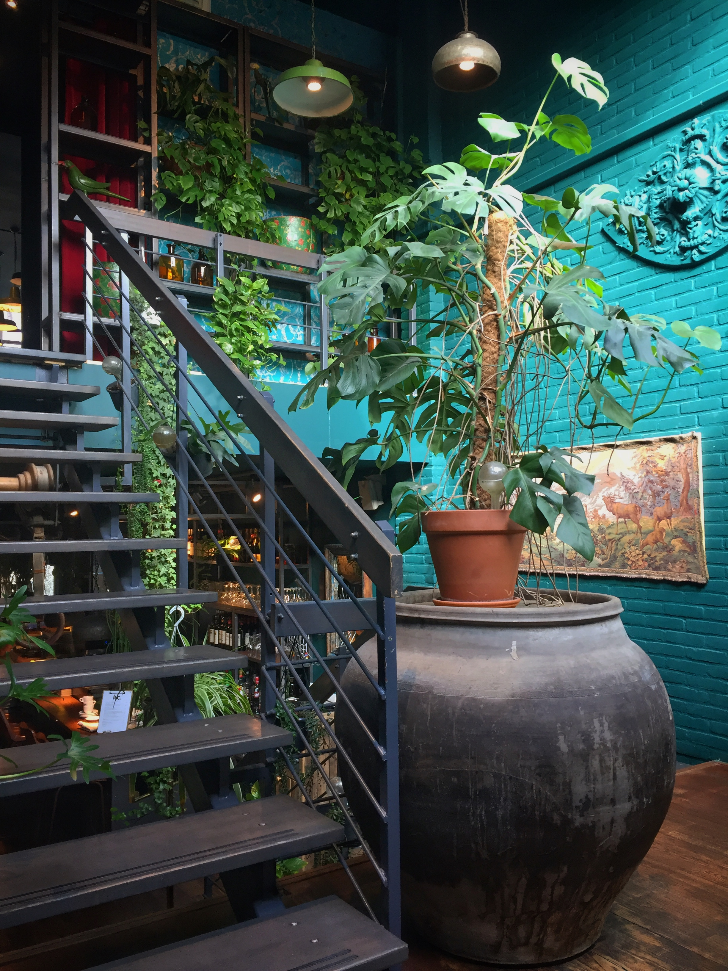 greenhouse feel of Restaurant Luc (Utrecht)