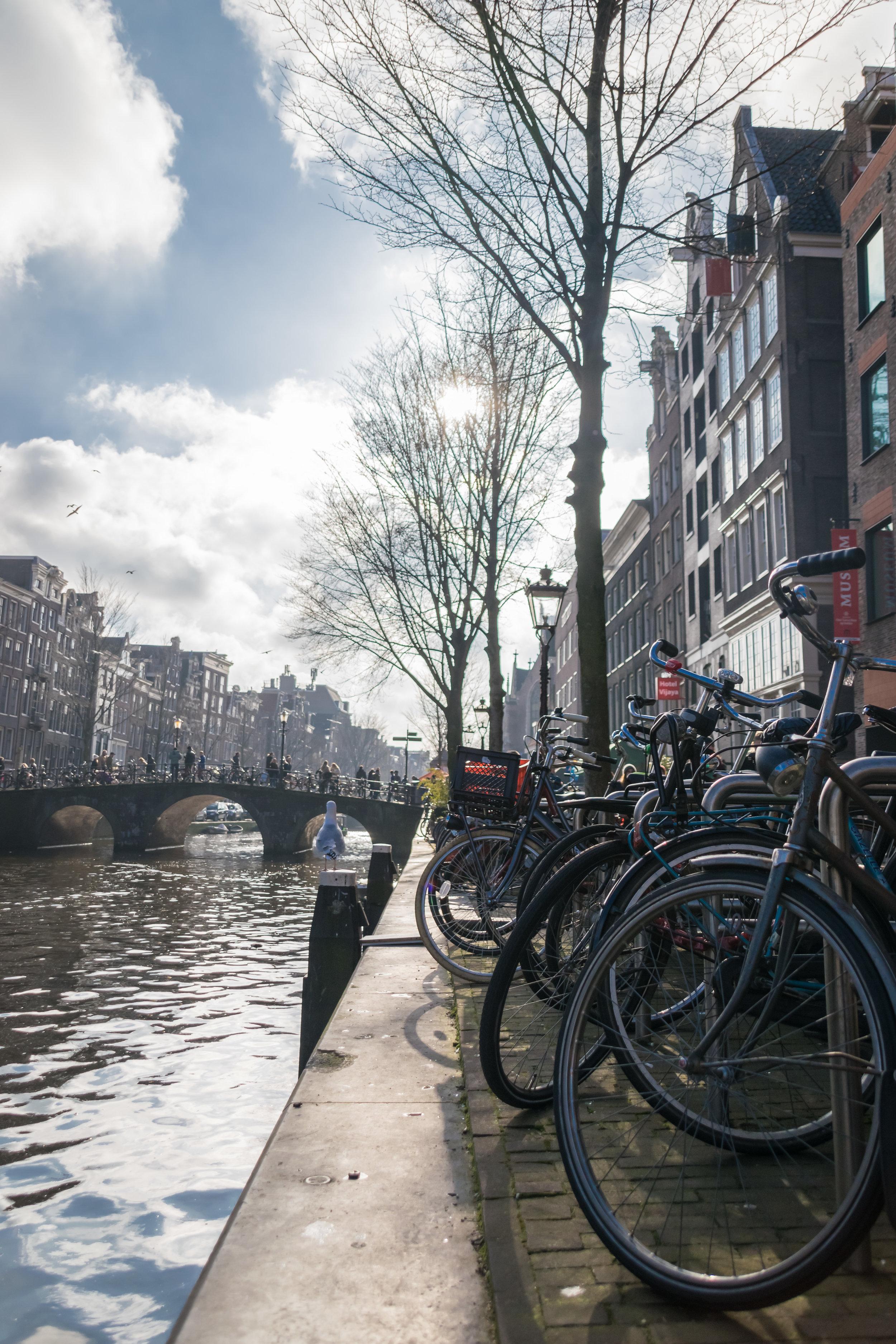 Amsterdam-12.jpg
