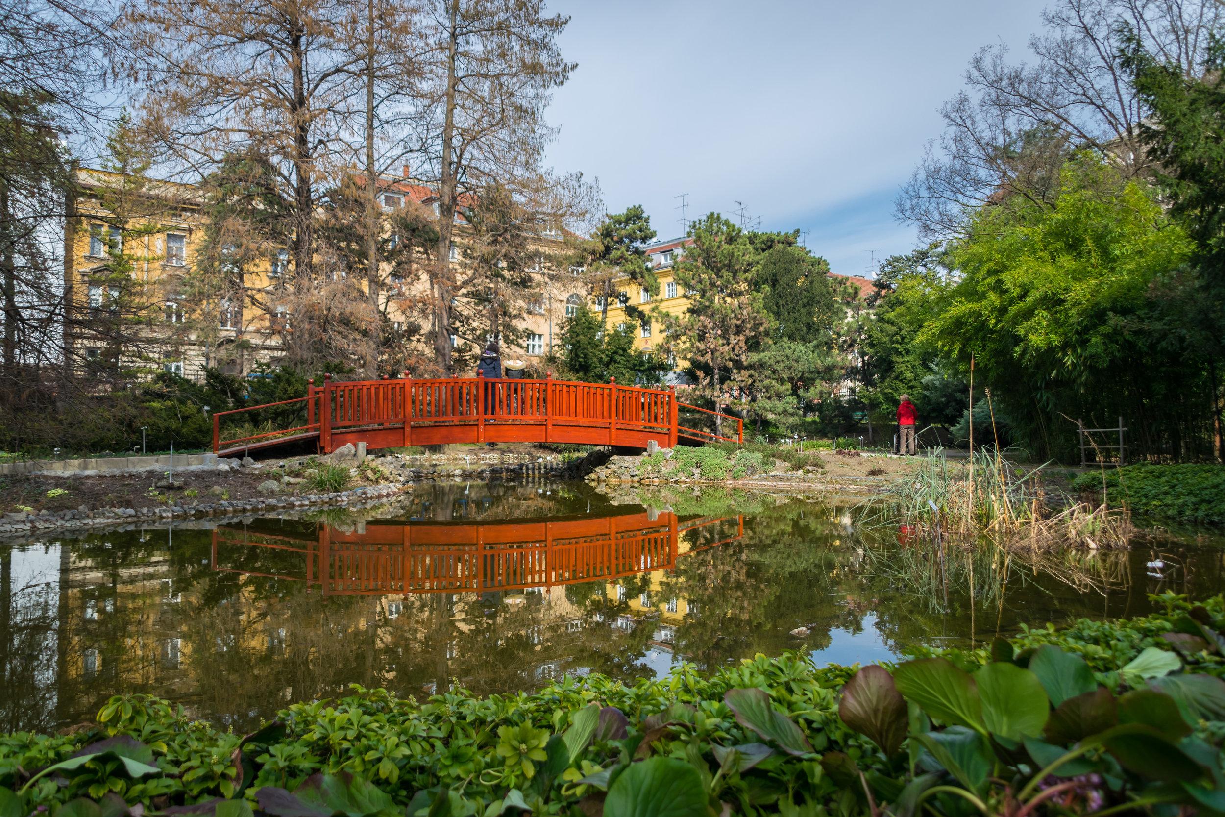 Zagreb Botanical Garden-5.jpg