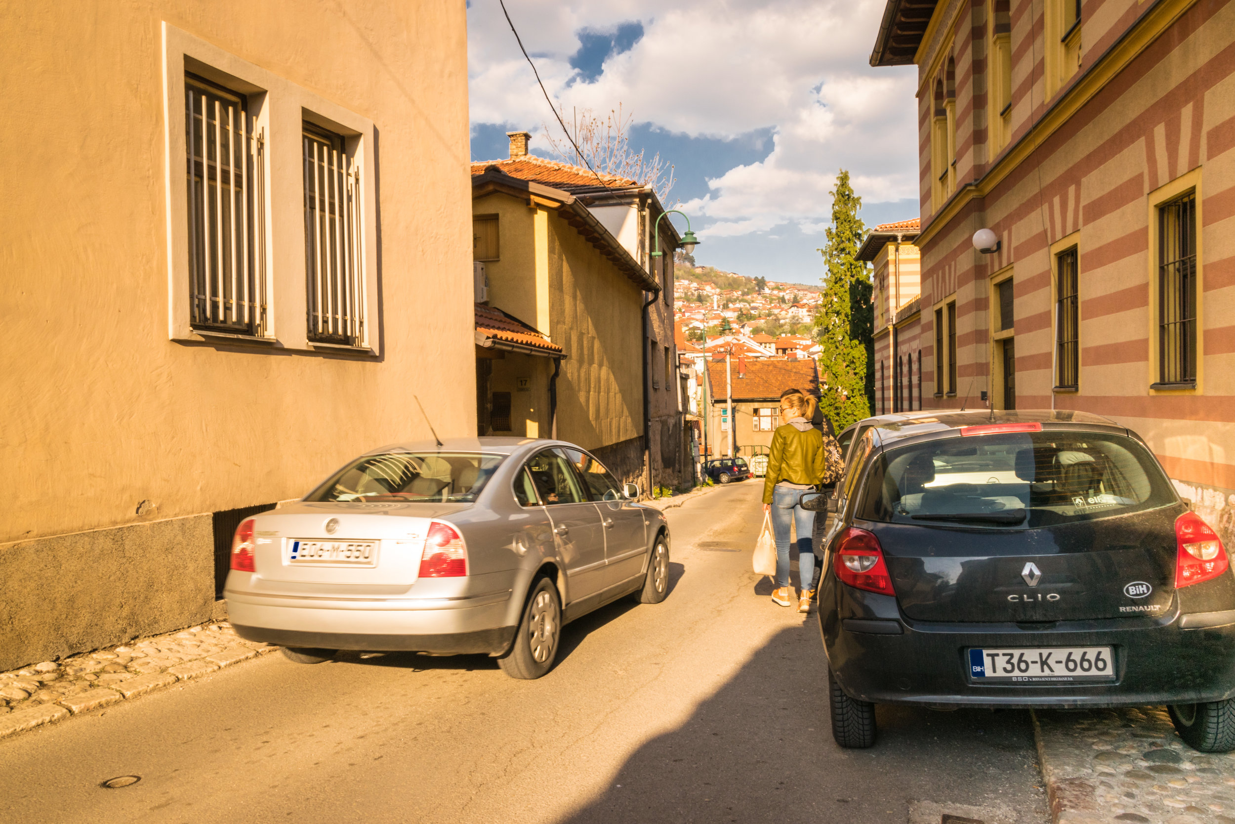 5 cars 1.jpg