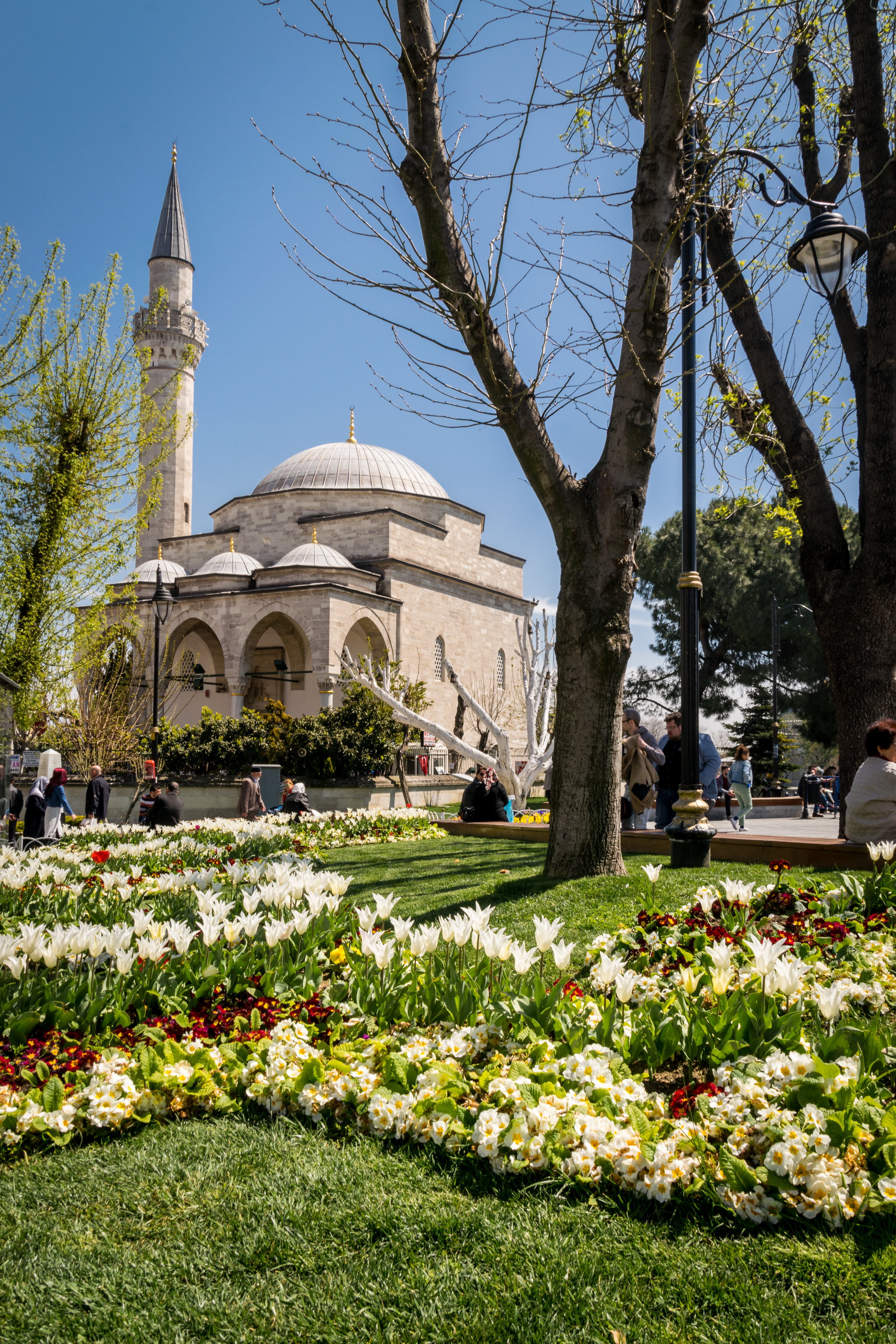 Welcome to Istanbul_flowers-1.jpg