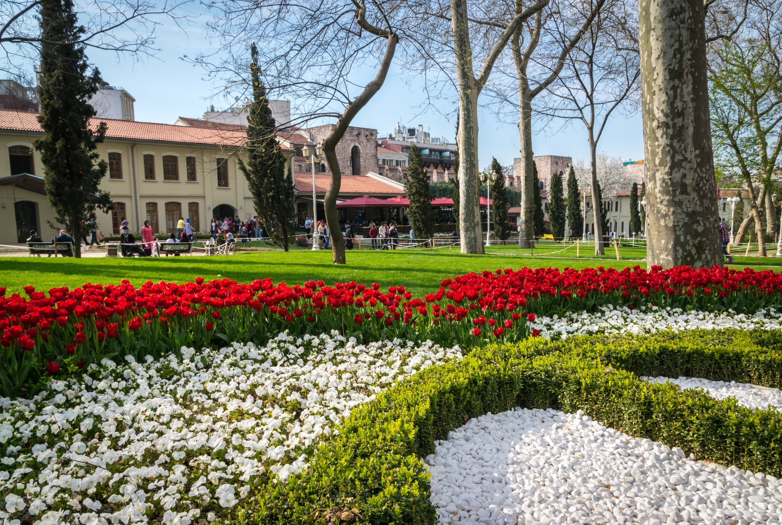 Welcome to Istanbul_flowers-5.jpg