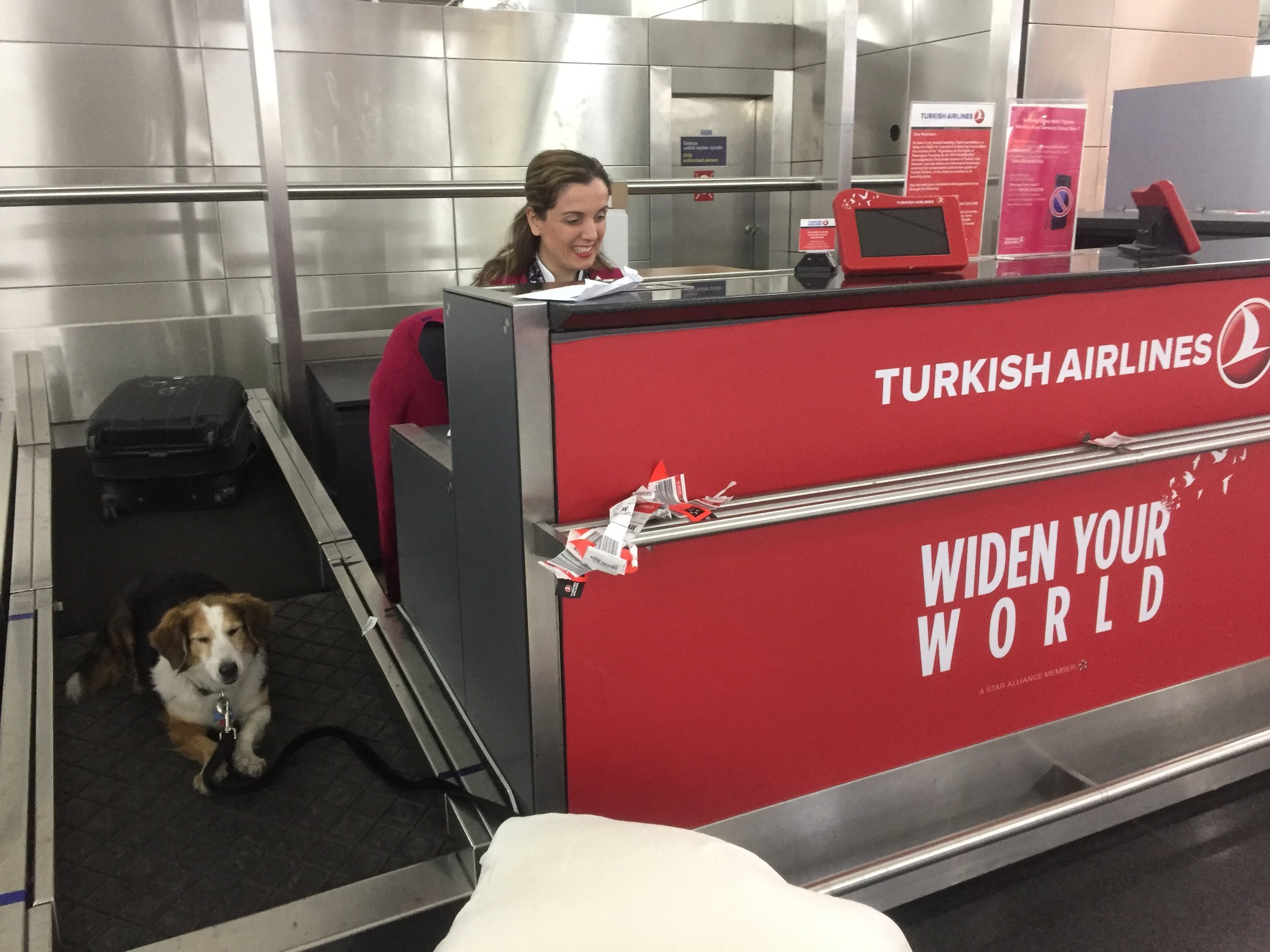 friendly folks at Turkish Airlines