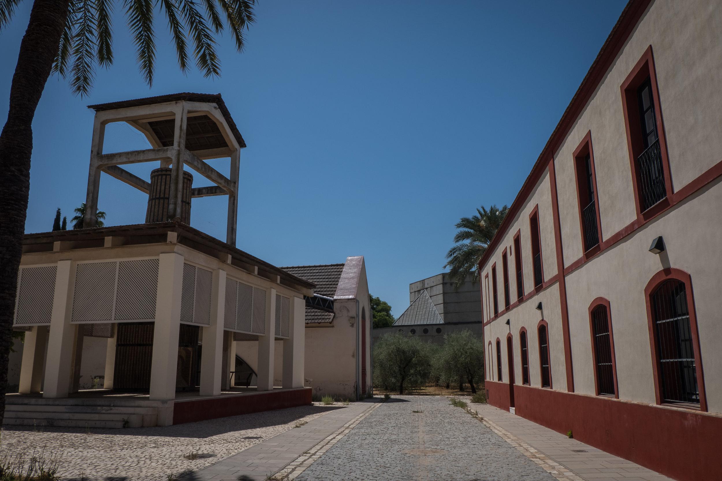 Sevilla_ceramics-4.jpg