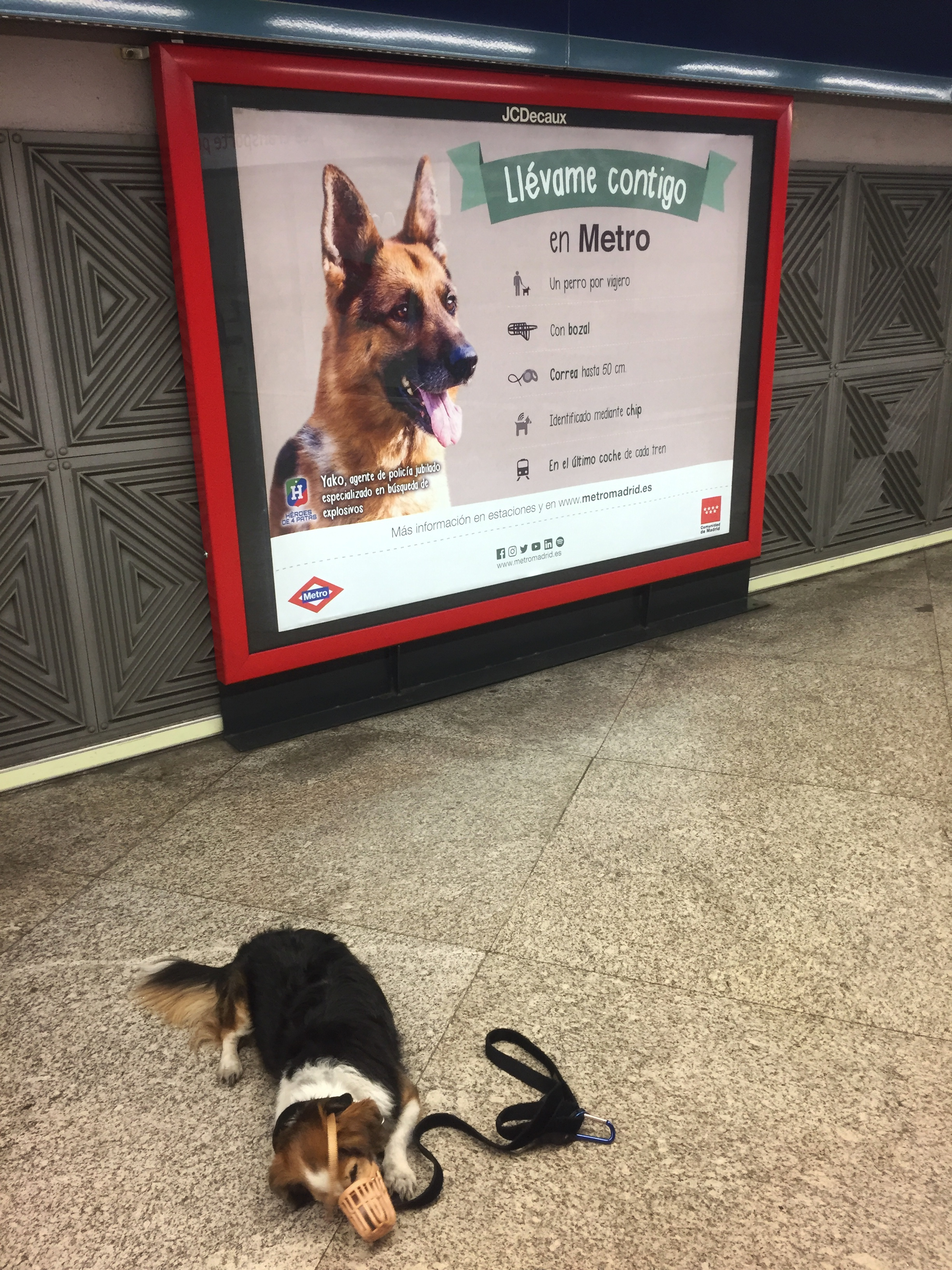 following Madrid metro's rules