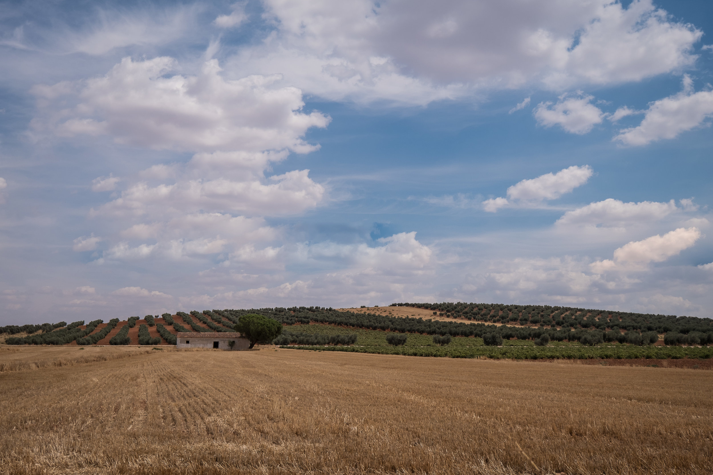 sw Spain countryside-5.jpg