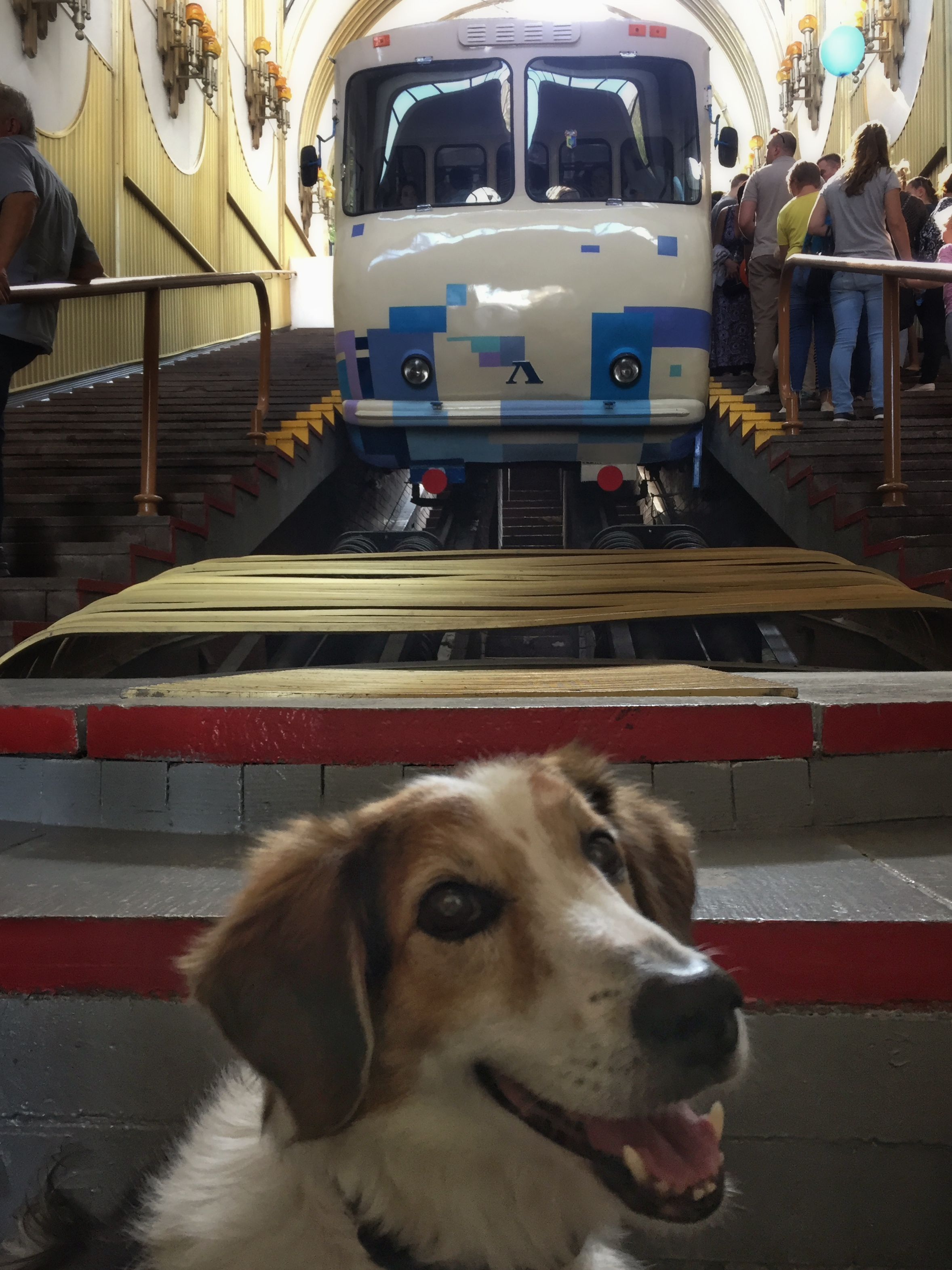 someone liked the funicular...!