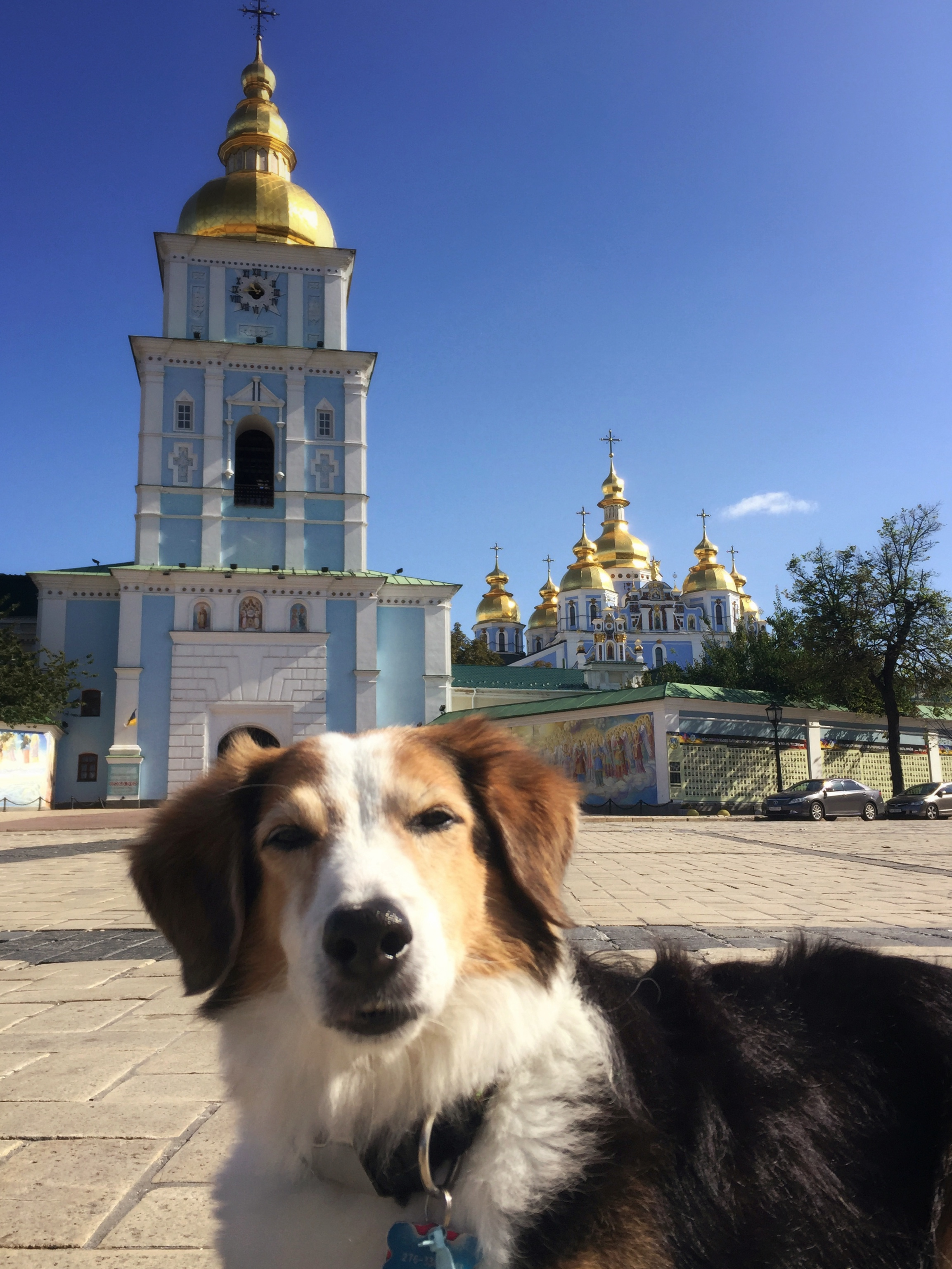 Ukrainian greetings!
