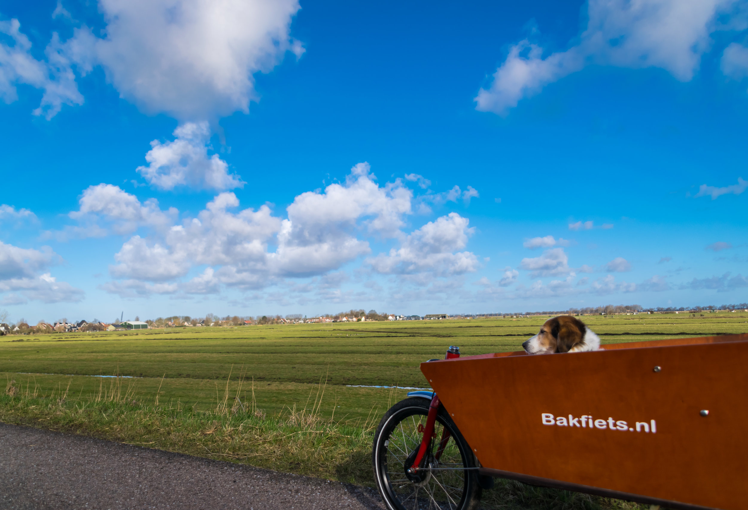 Netherlands_bike+ride-2.jpg