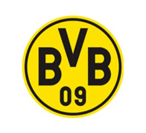 BVB.png