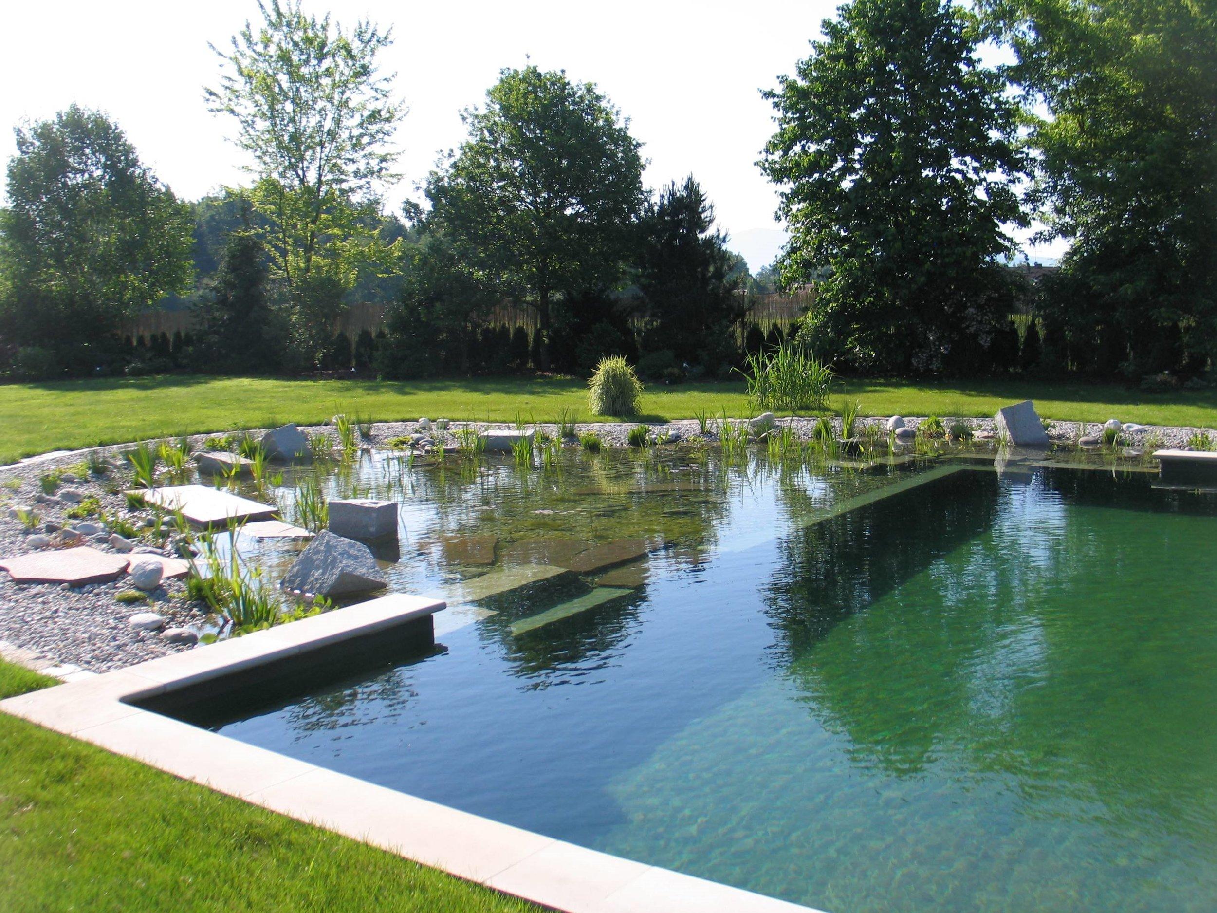Natural Pool.jpg