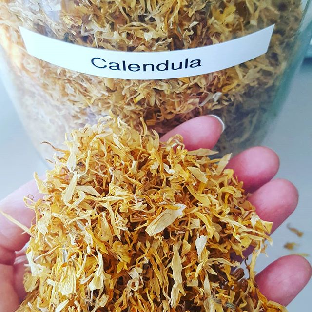 Calendula is a beautiful and happy ray of sunshine…perfect for a Monday! Did you know that calendula can be used to heal cuts, bruises, and insect bites? It also has anti-inflammatory benefits plus it helps to increase blood flow, improve circulation and provide antioxidant benefits to the skin. It can even be taken internally for stomach or digestive issues. We love using it in our products since it has so many wonderful properties. Give it a try!