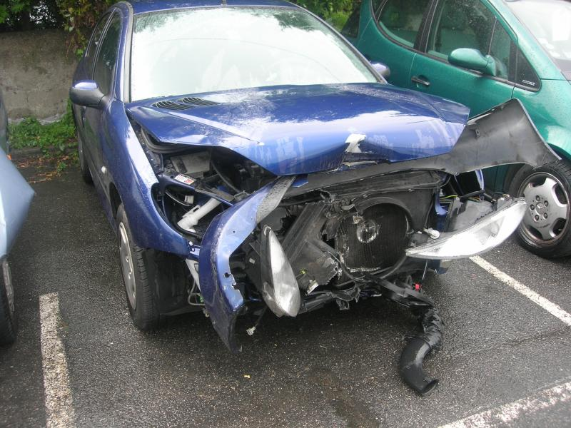 Peugeot 206  after a hit with a Boar