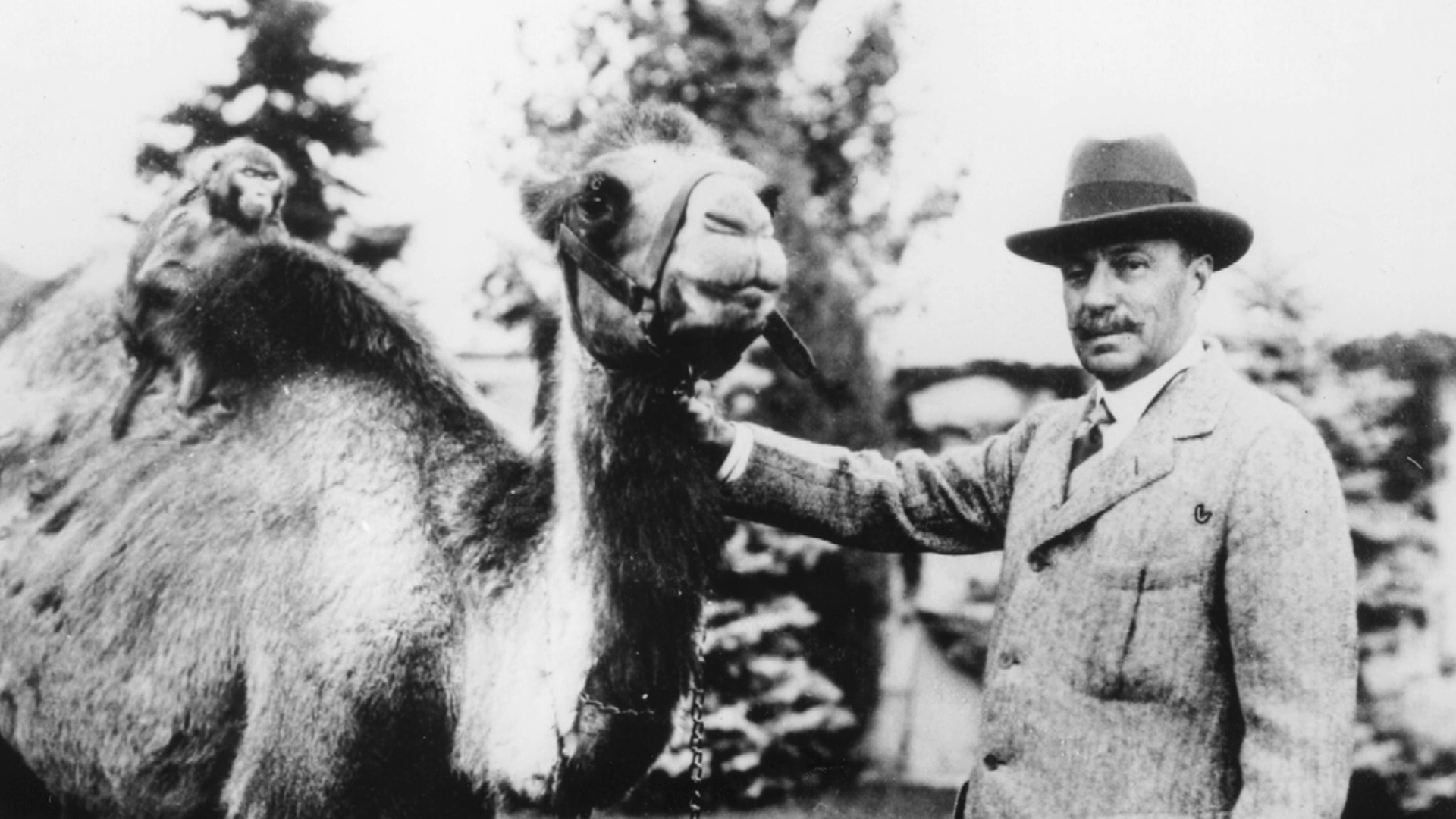 Spencer Penrose and a camel at his Cheyenne Mountain Zoo.