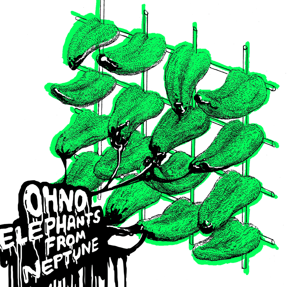 ELEPHANTS FROM NEPTUNE - OH NO (2016) - ESTONIA