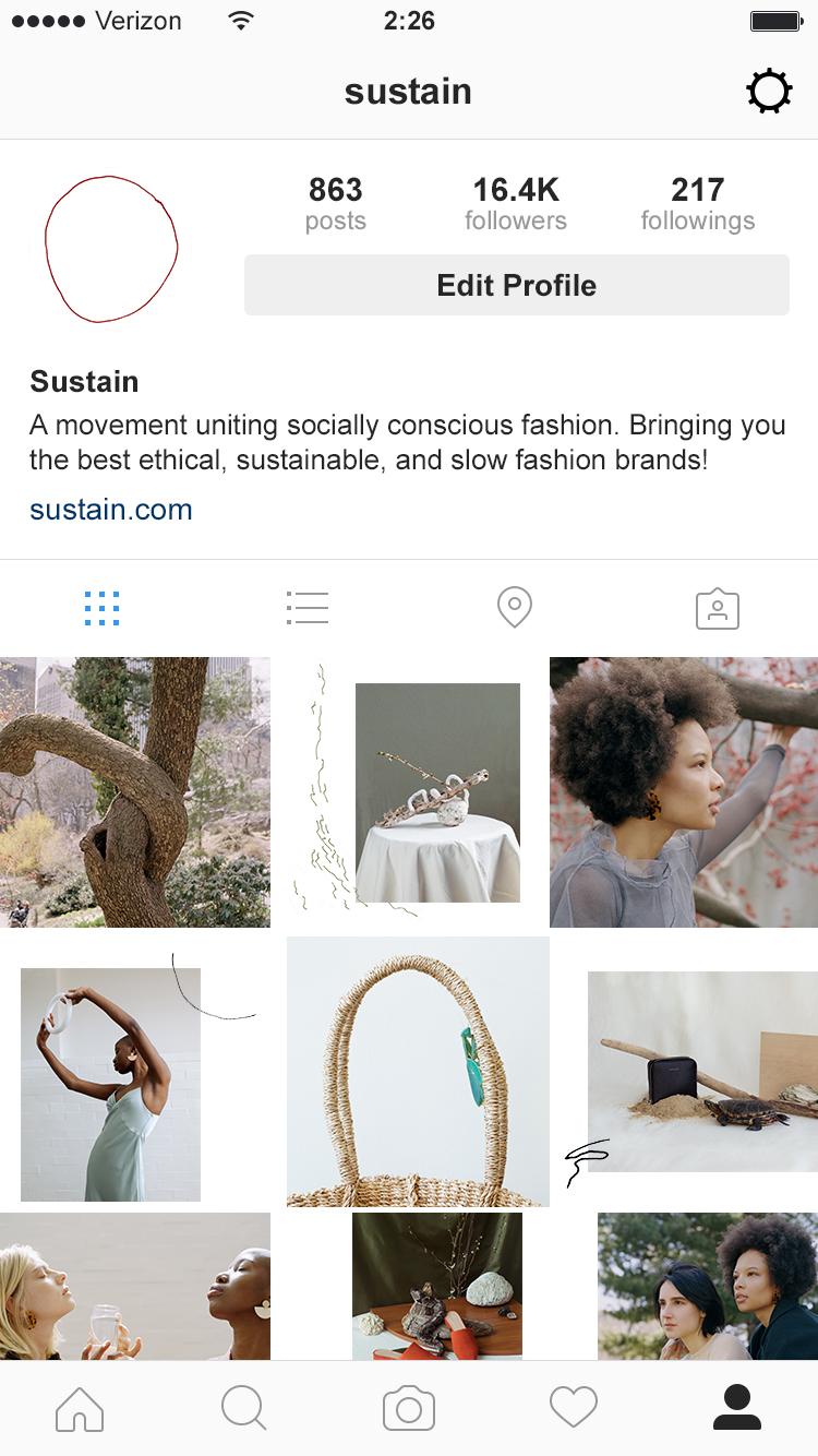 SUSTAIN IG profile mockup.jpg