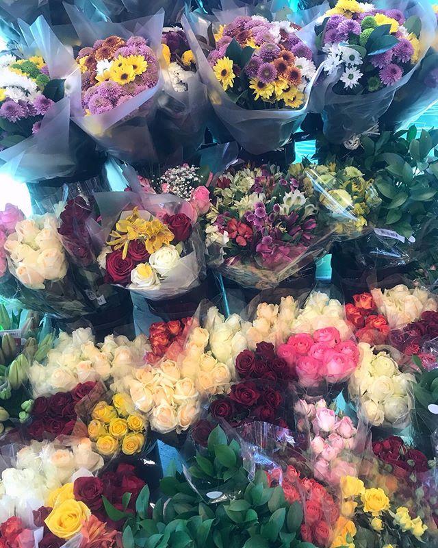 Flores de Segunda 💐