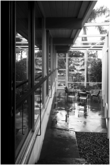 Photo 8: Mid-century House Architect William Frizzell 1957 Photo: Joshua Colt Fisher