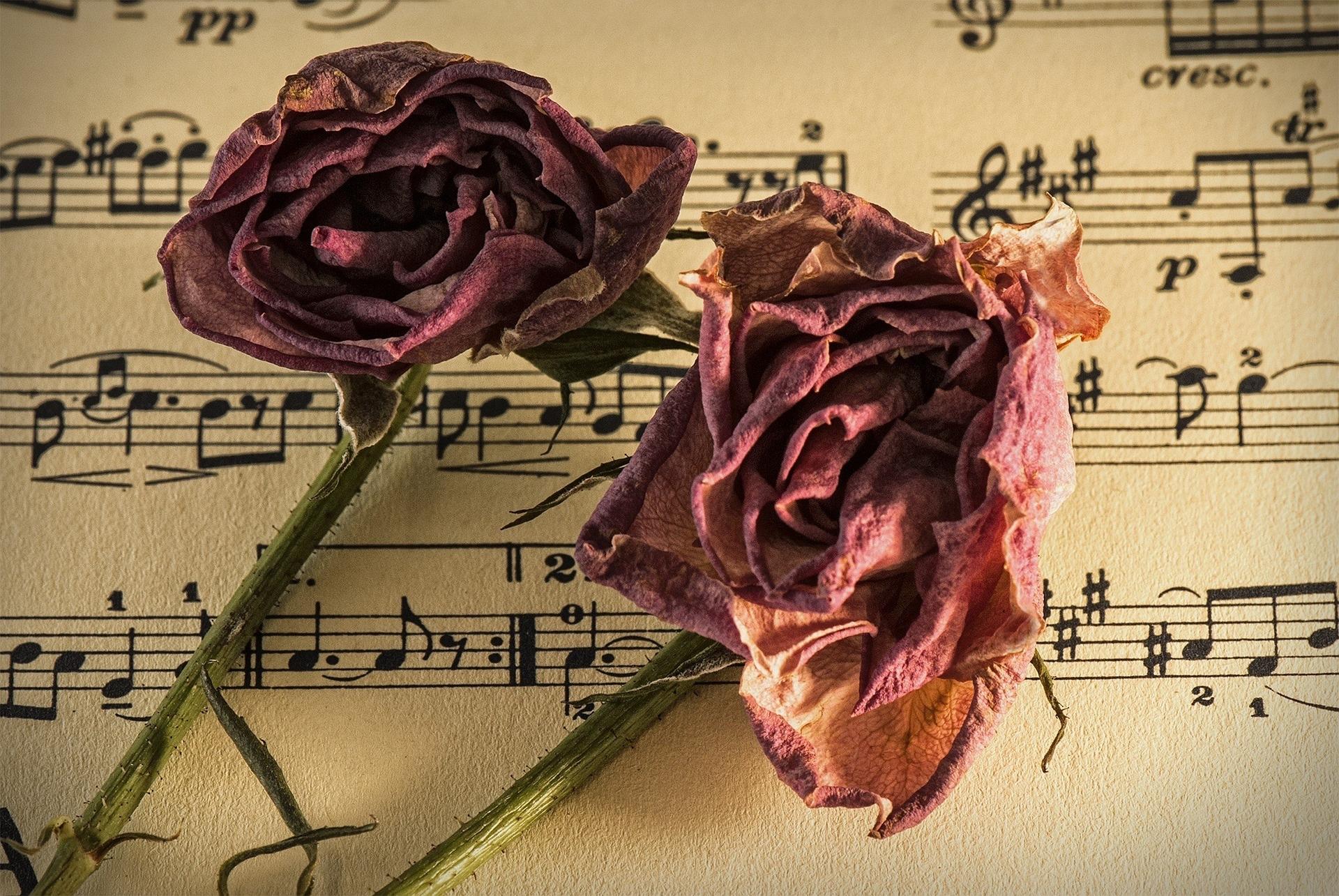 sheet-music-944796_1920.jpg