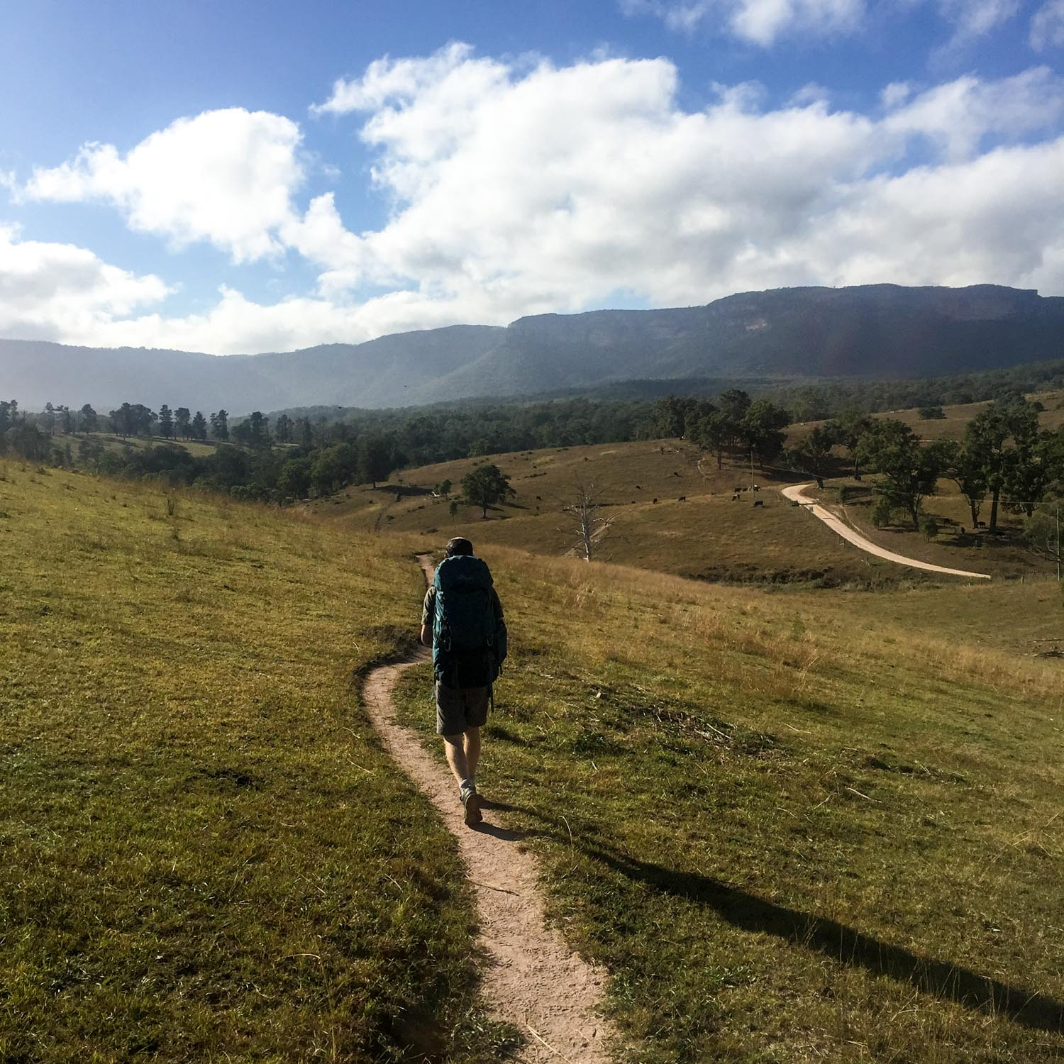 <3 the Megalong Valley