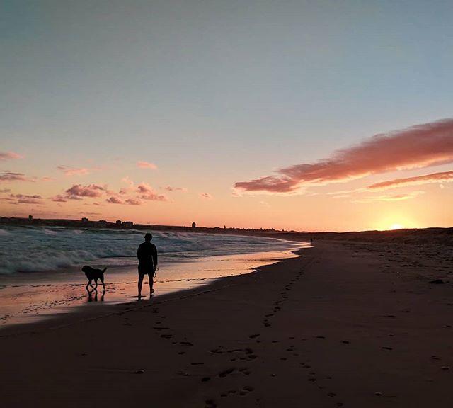Dog walks at their finest 🐾