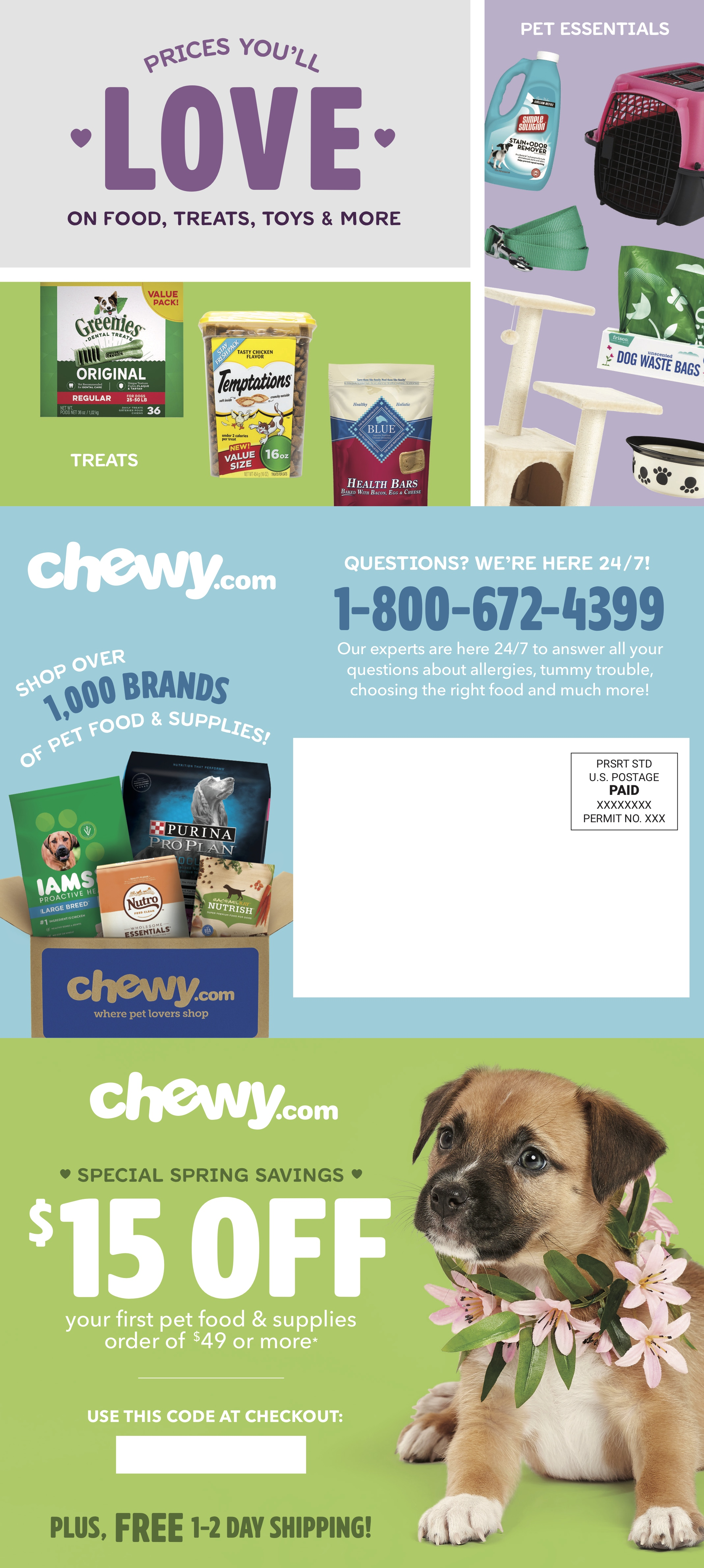Chewy Direct Mail - Spring 2018 — Shelby Owens