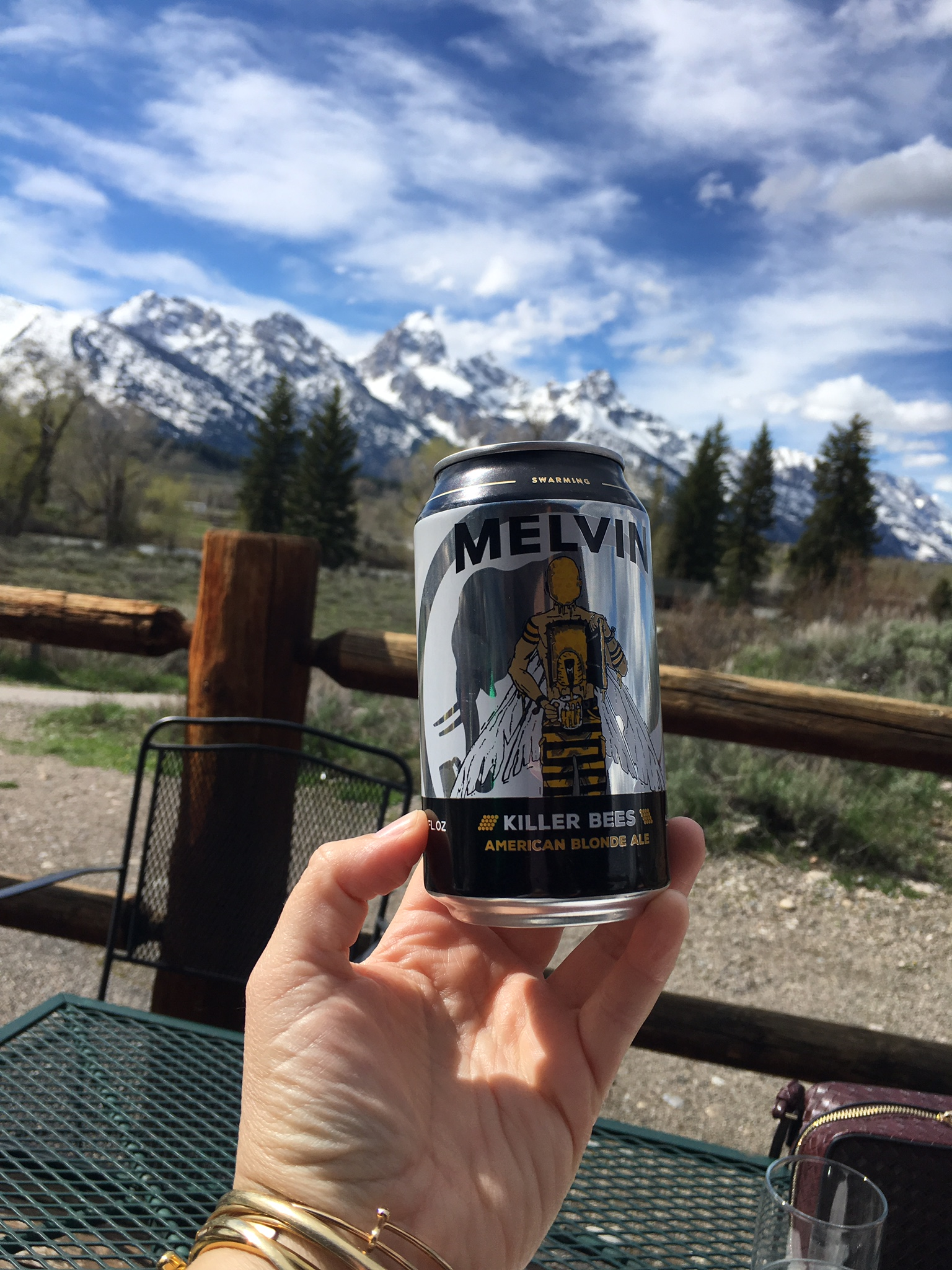 Melvin's Killer Bees Beer in front of Teaton Mountains