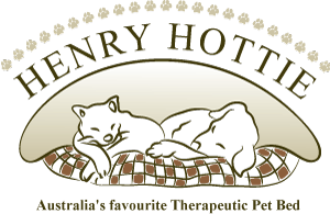 henry_hottie_logo_1433390323__26430.png