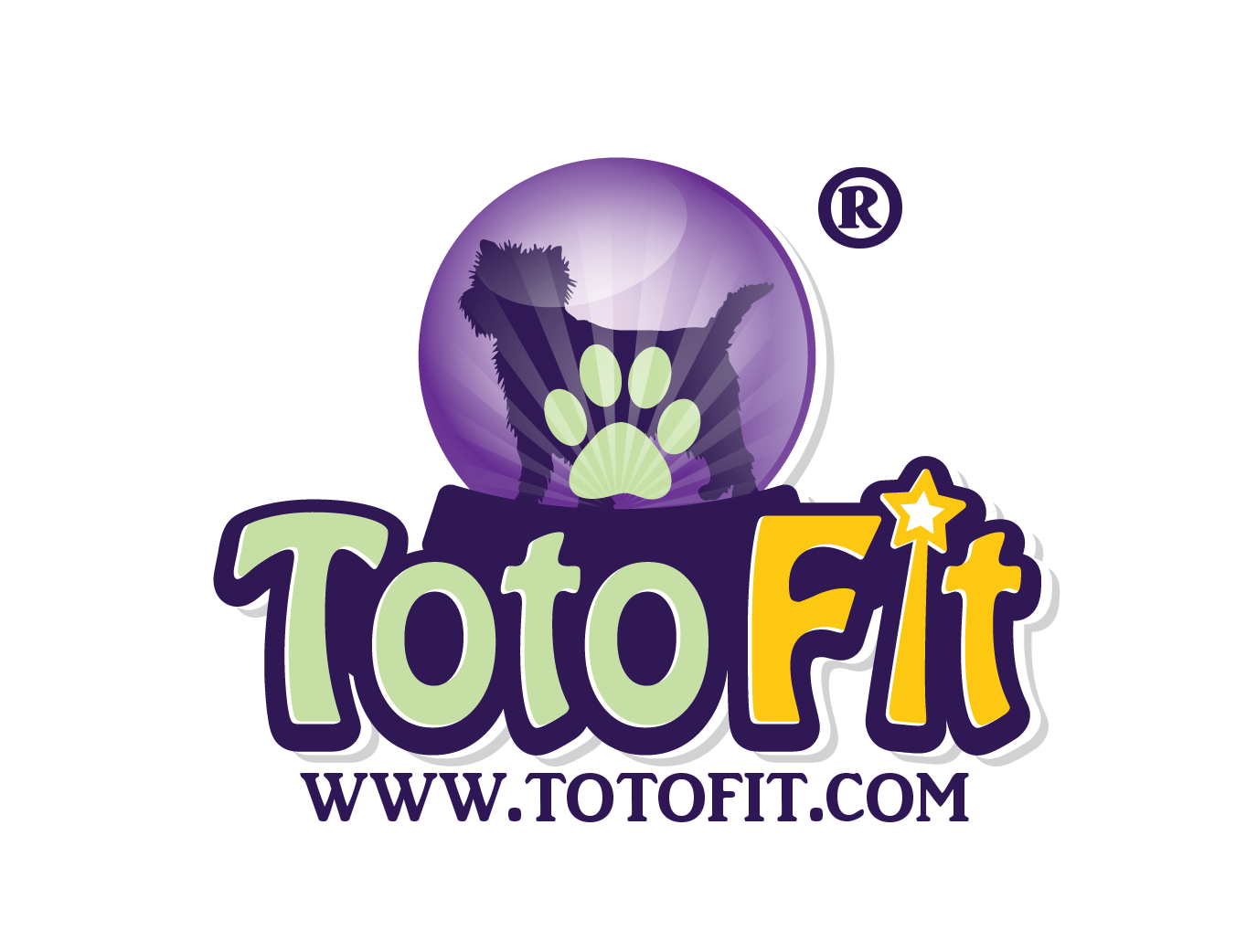 TOTO-FIT_final_2-with-R.png