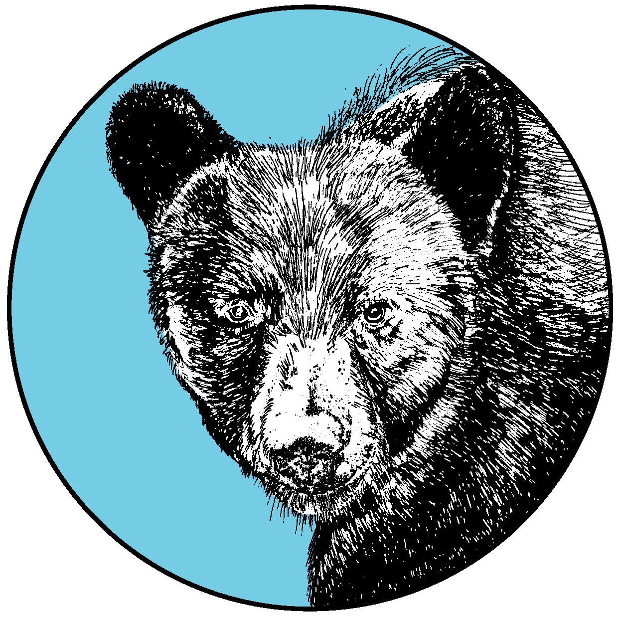 bear-scan_FINAL copy.jpg