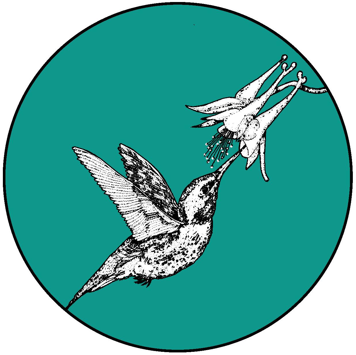 Hummingbird_FINAL copy.jpg
