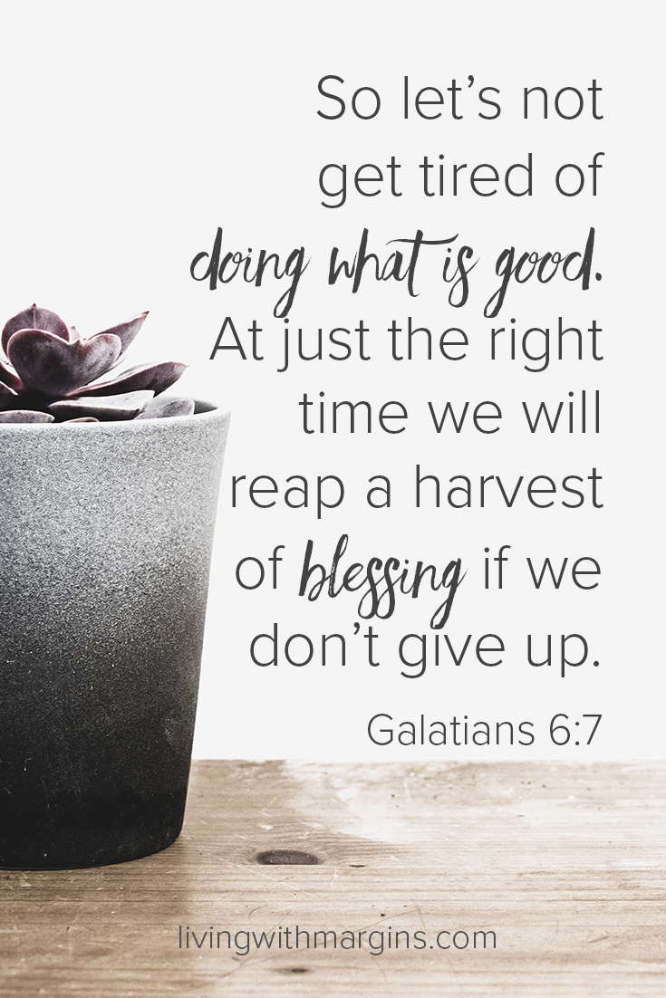 We will reap a harvest of blessing if we don't give up. Galatians 6:7
