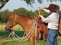 Securing Mecate reins