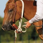 Tying up Mecate Reins