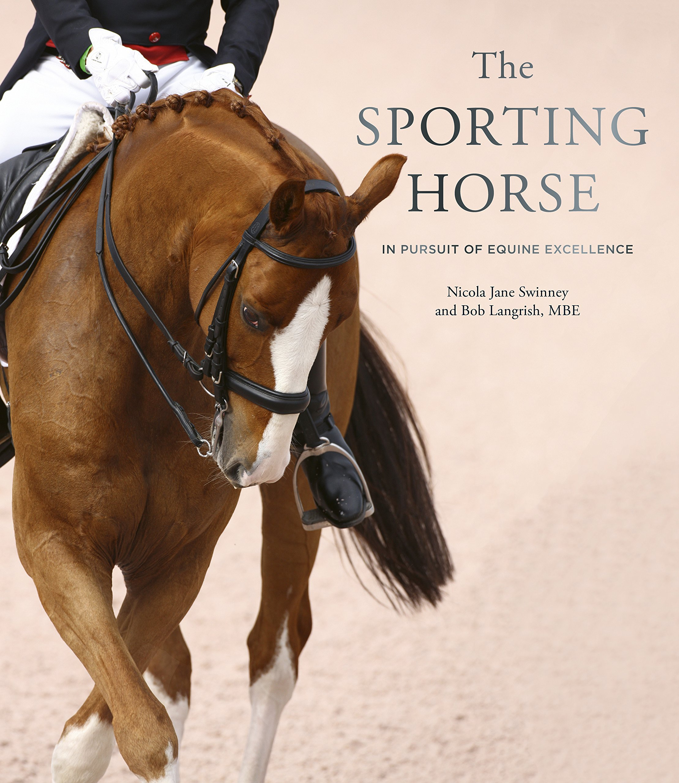 Sporting Horse.jpg