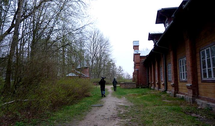 Birding in the gloom in Bialowieza Town Park.