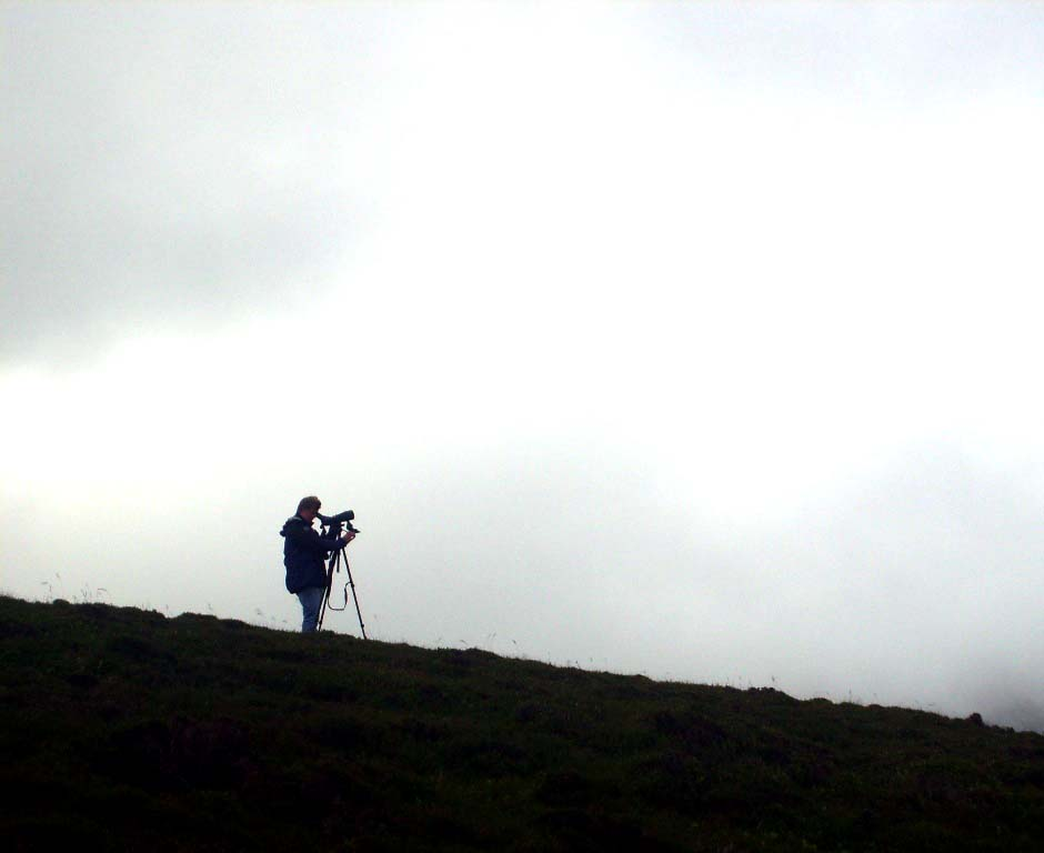 MUZZA LOOKING FOR PTARMIGAN