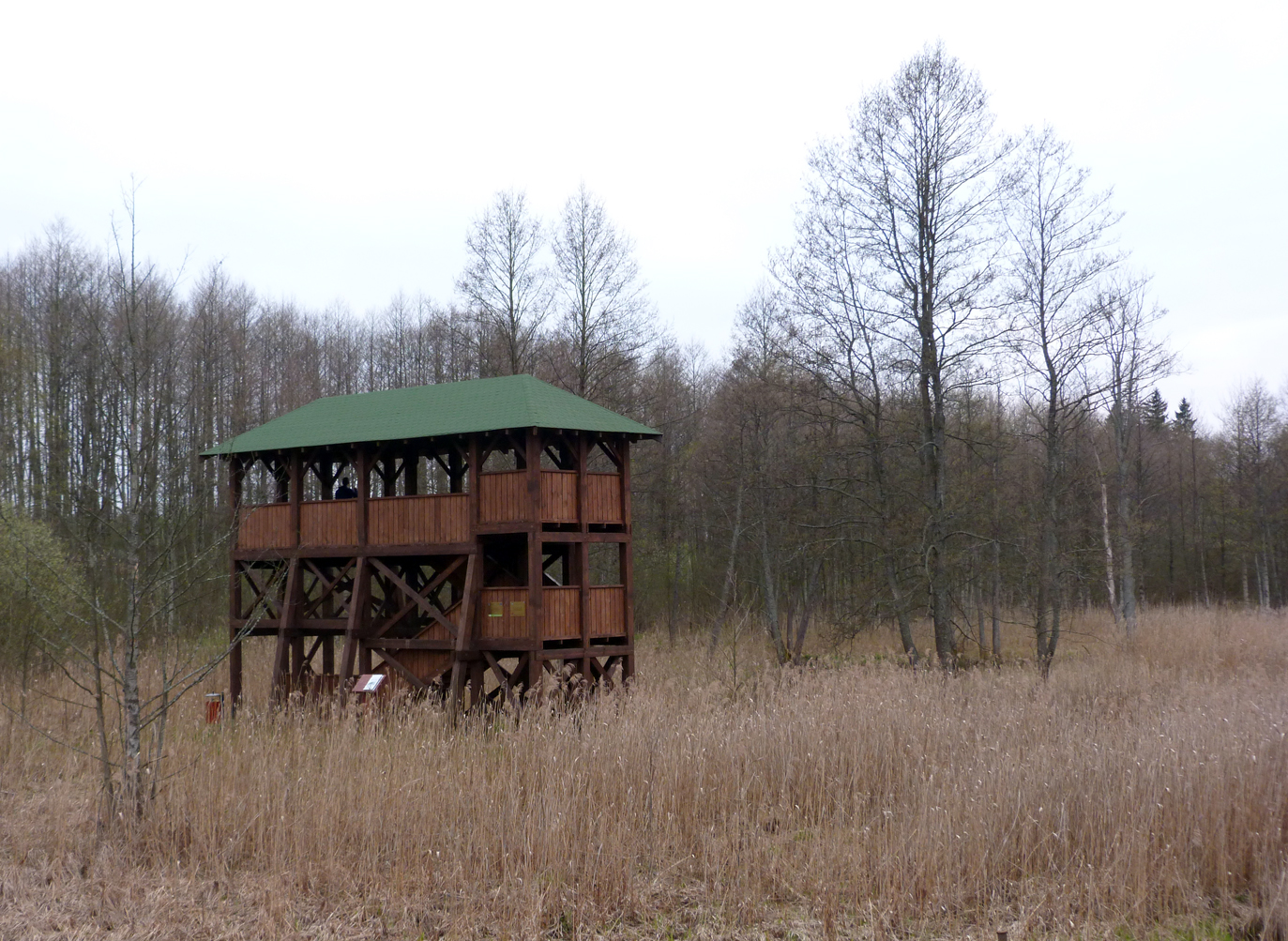 There were lots of viewing platforms such as this in Poland - many for wildlife watching, but I suppose many also for hunters perhaps.