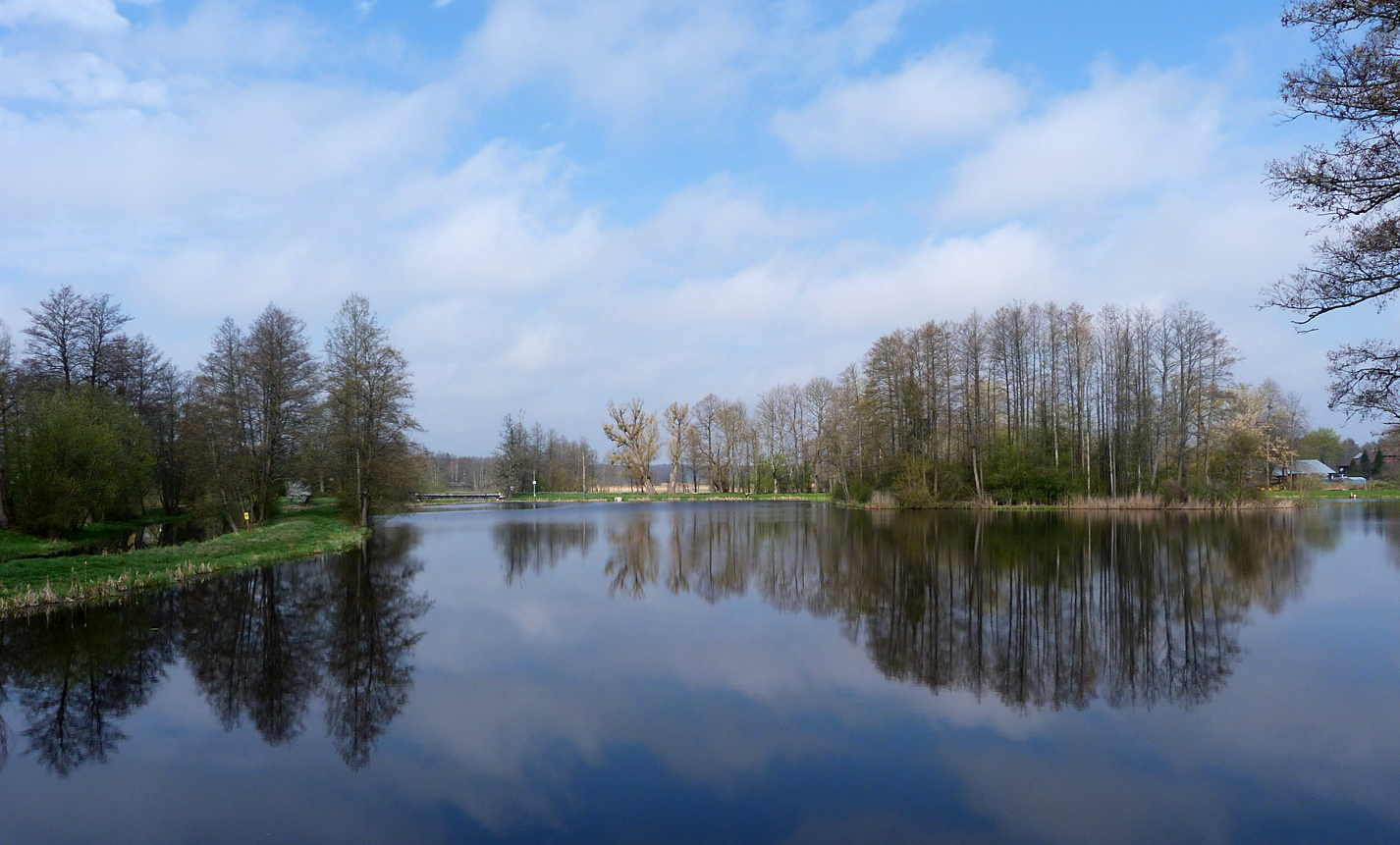 In contrast to our gloomy first visit to Bialowieza Town Park, our second visit was bathed in bright sunshine.
