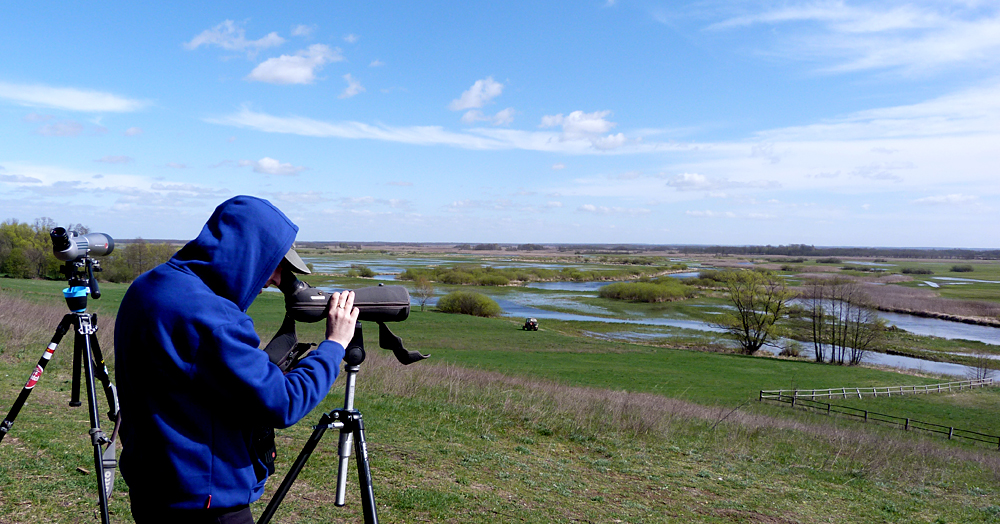 BUBO hit the impressive Biebrza Marshes