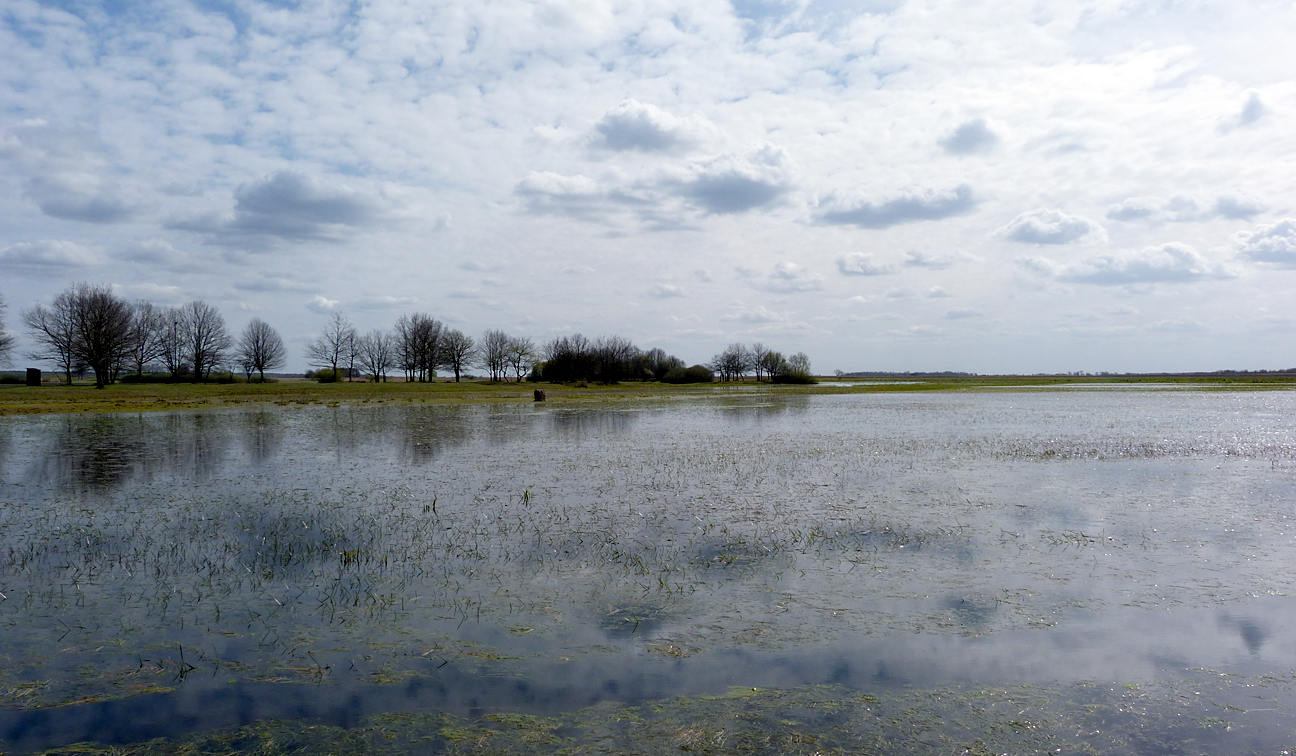 Mscichy - there was extensive waterlogged marsh in all directions