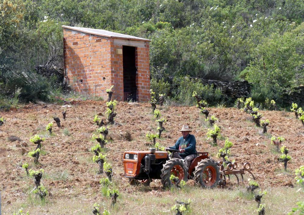 Montfrague farmer, 13 Apr 19